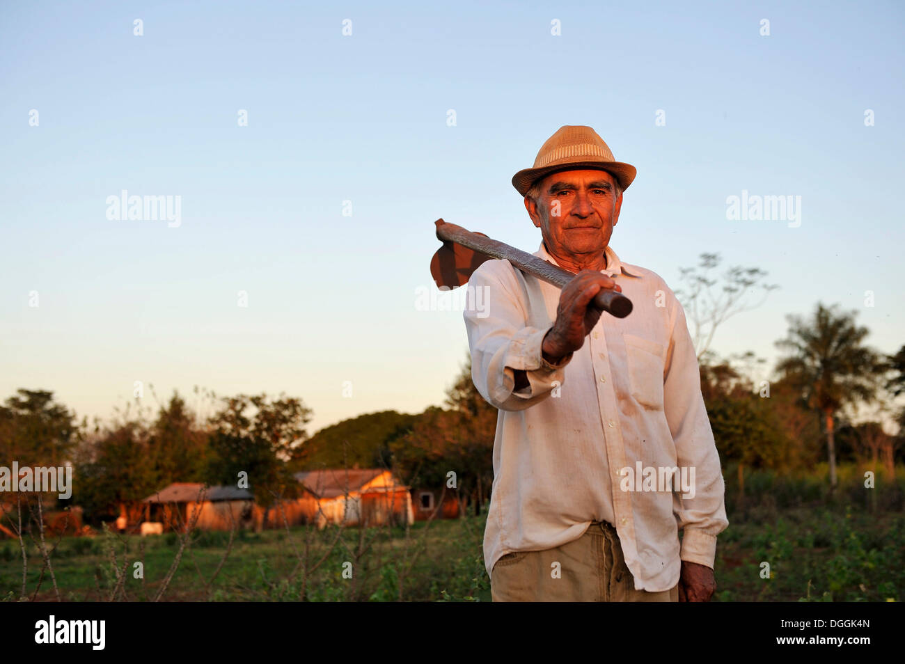 Peasant farmer, 70, standing with a hoe on a field, Pastoreo, Caaguazú Department, Paraguay - Stock Image