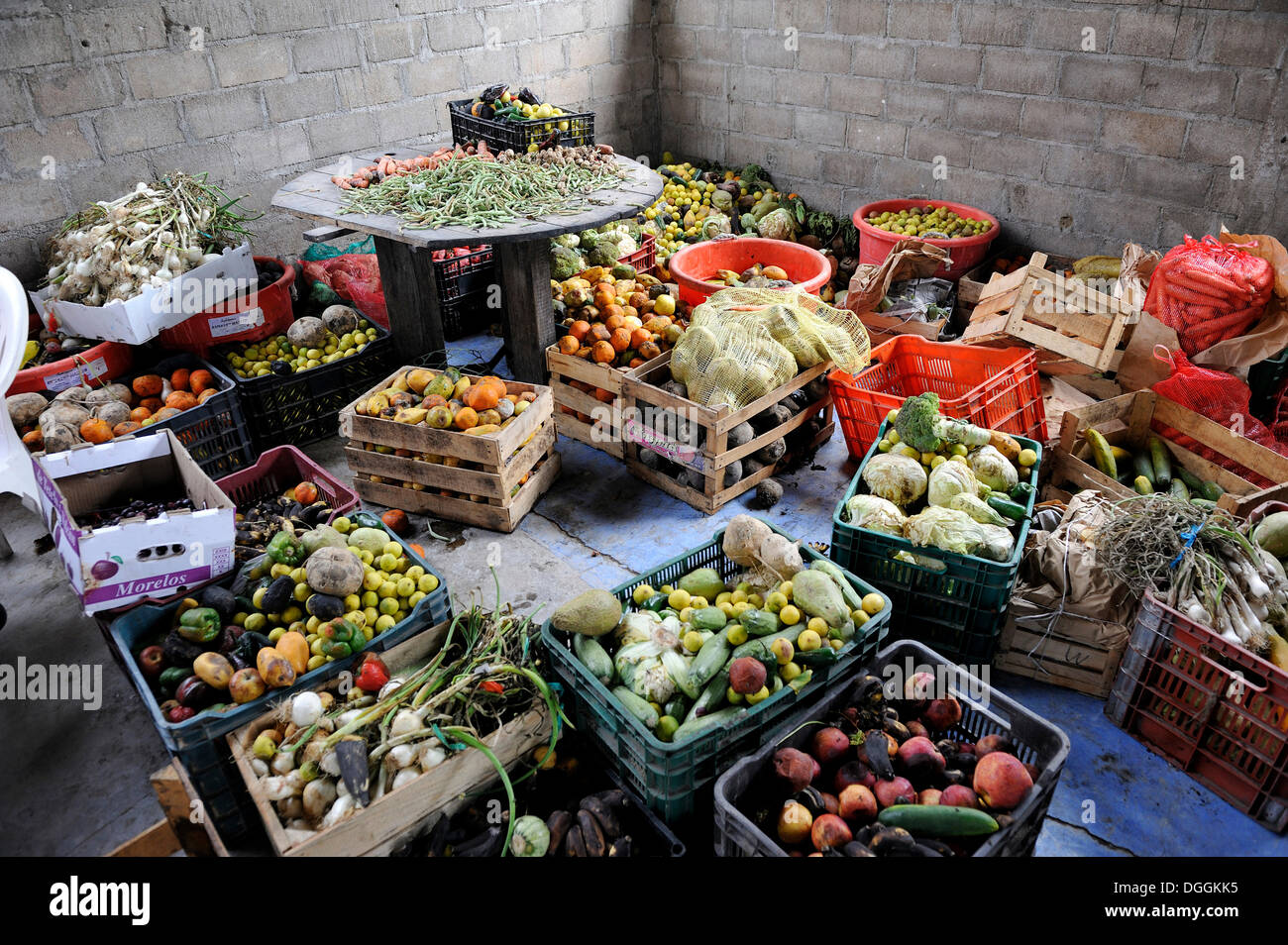 Overripe fruit and vegetables, donation from market traders to a Christian shelter for illegal immigrants from Latin - Stock Image