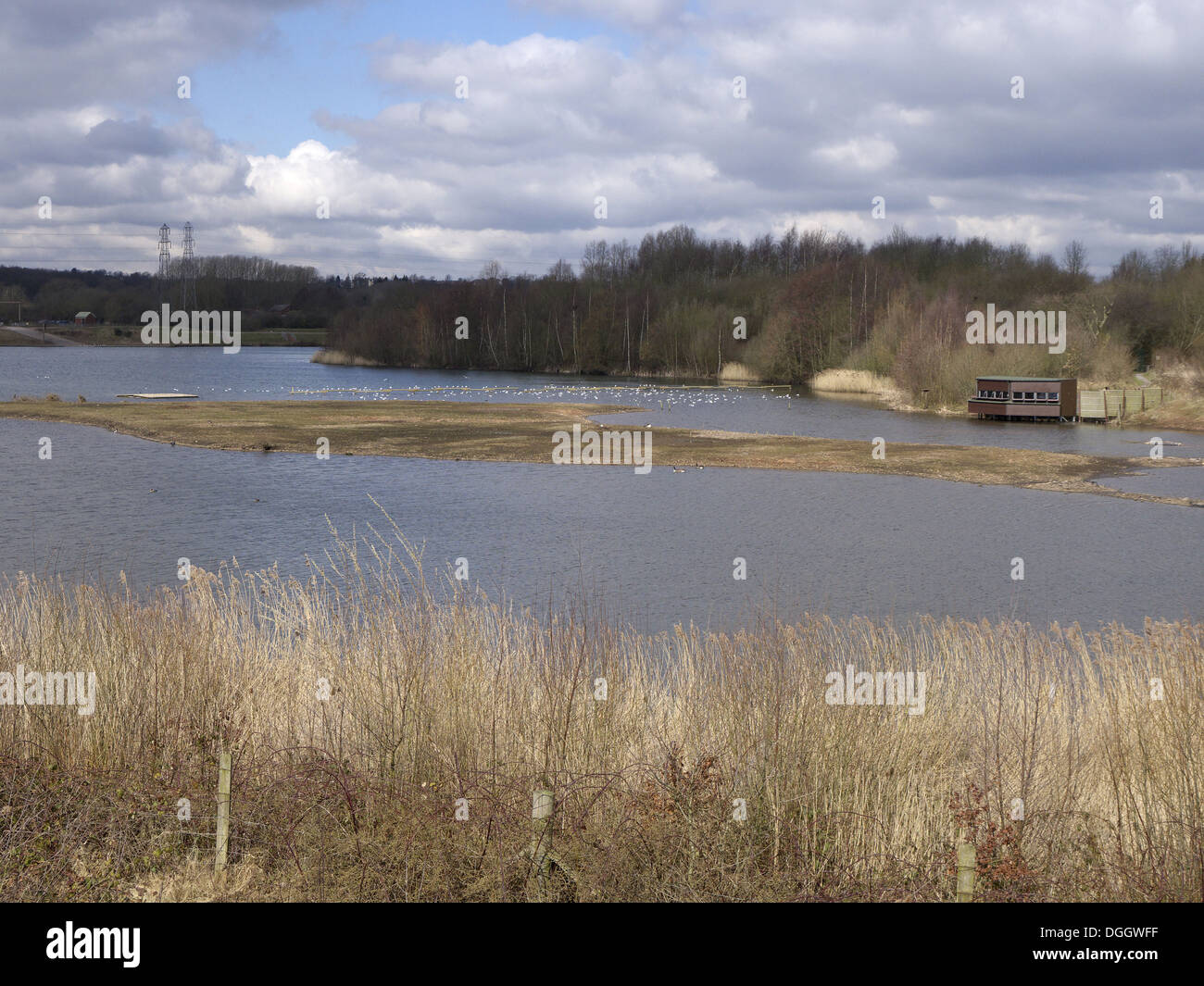 View of freshwater lake habitat with birdwatching hide Forge Mill Lake Sandwell Valley RSPB Reserve West Midlands England April - Stock Image