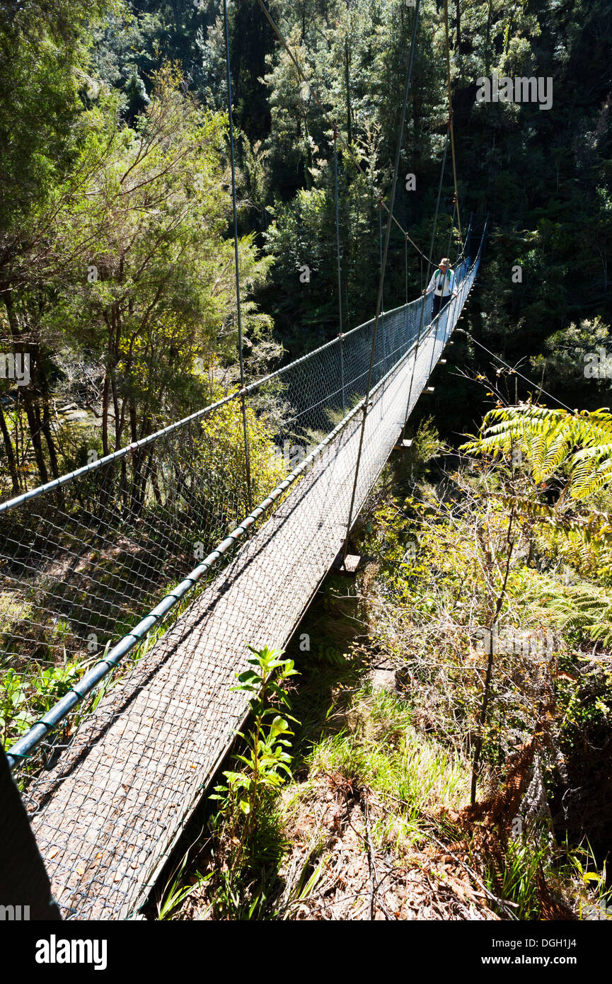 A walker crossing a suspension footbridge over a river on the Abel Tasman Coastal Track, South Island, New Zealand - Stock Image