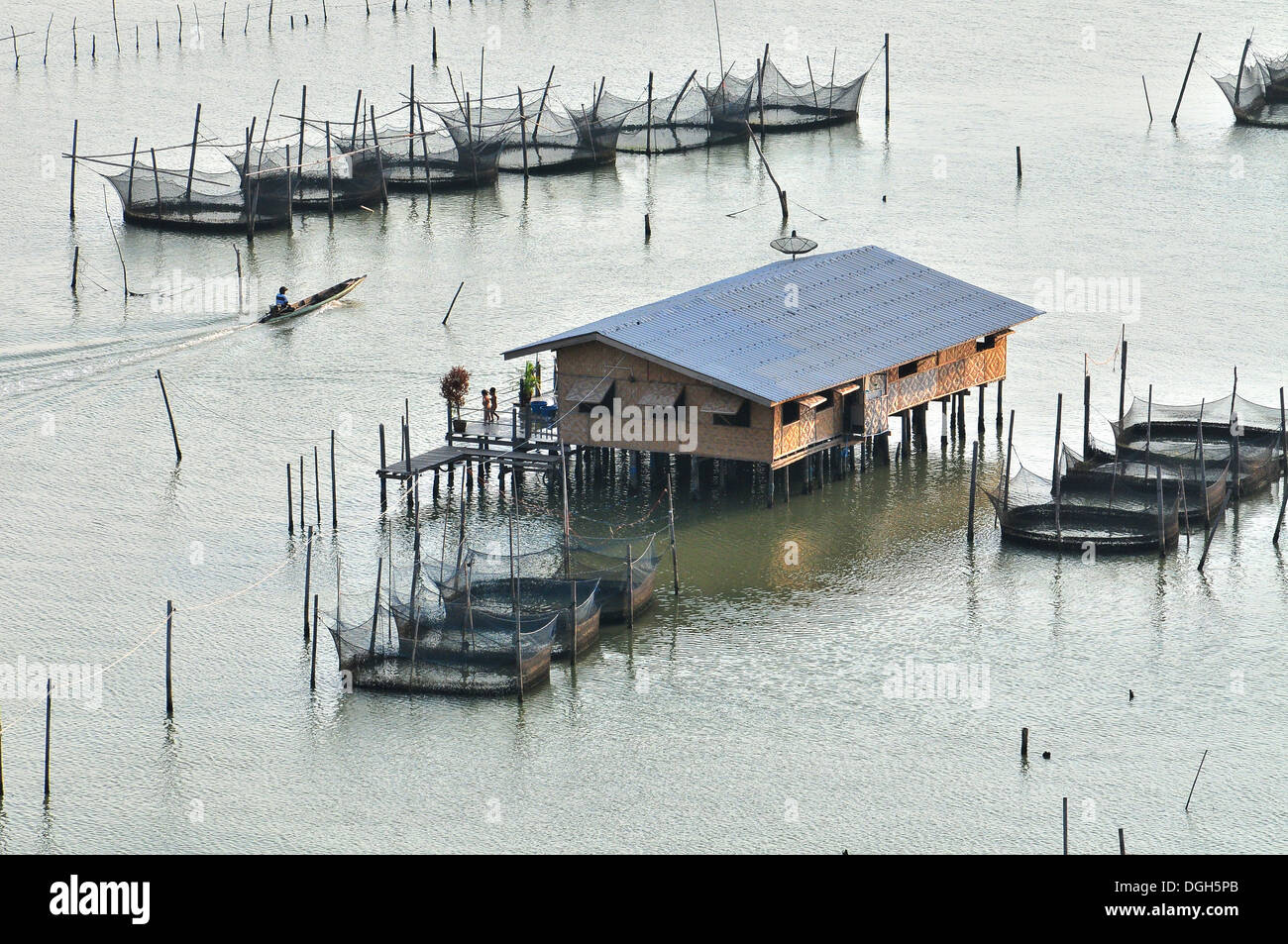 Fish Farming In Thailand Stock Photos & Fish Farming In Thailand ...