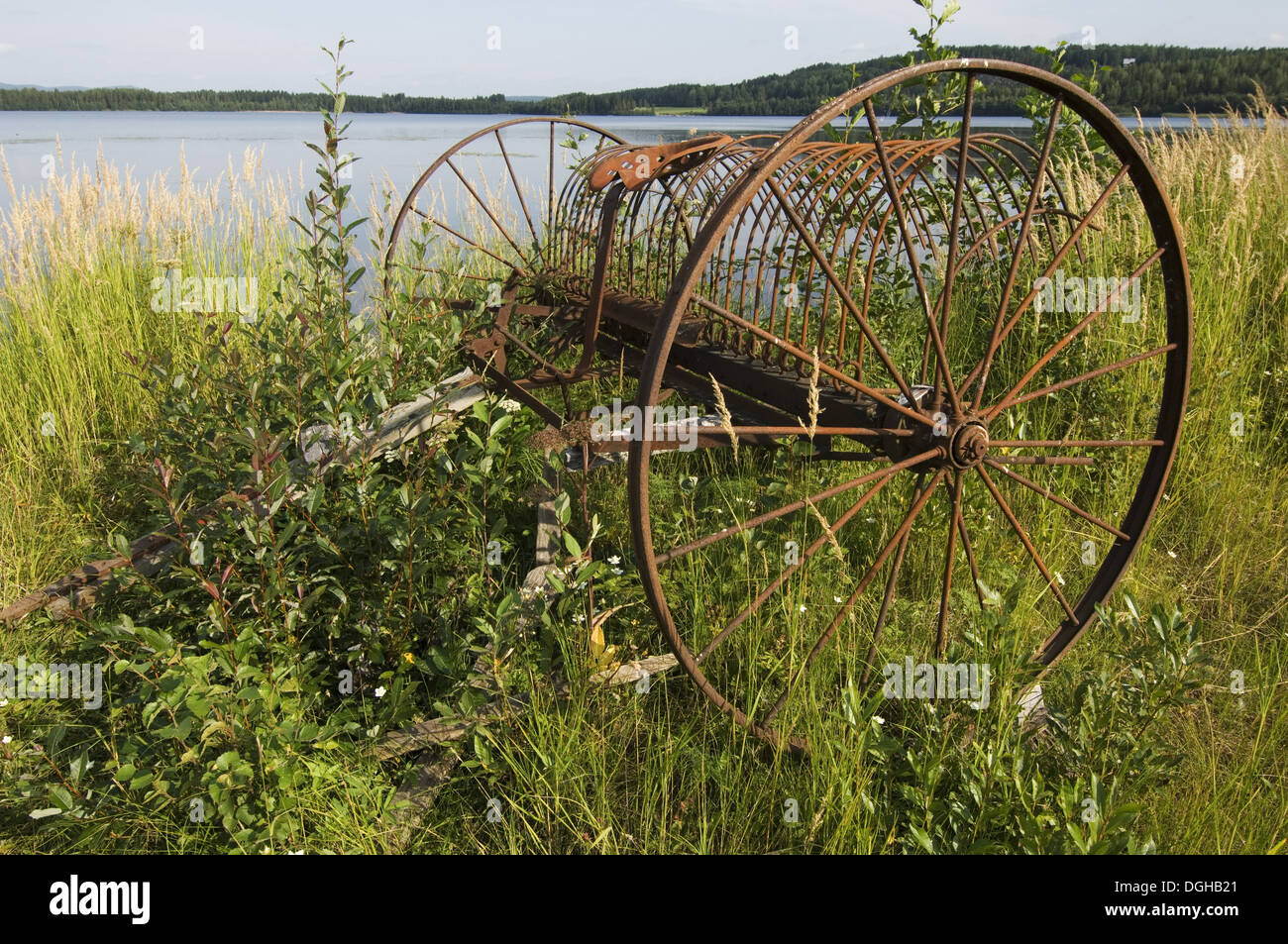 Rusty old-fashioned horse-drawn hay rake, at edge of water, Sweden - Stock Image