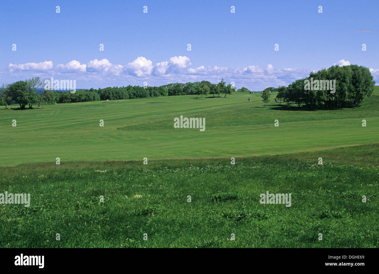 Golf course, view across fairway and rough, Fasterbo, Sweden - Stock Image
