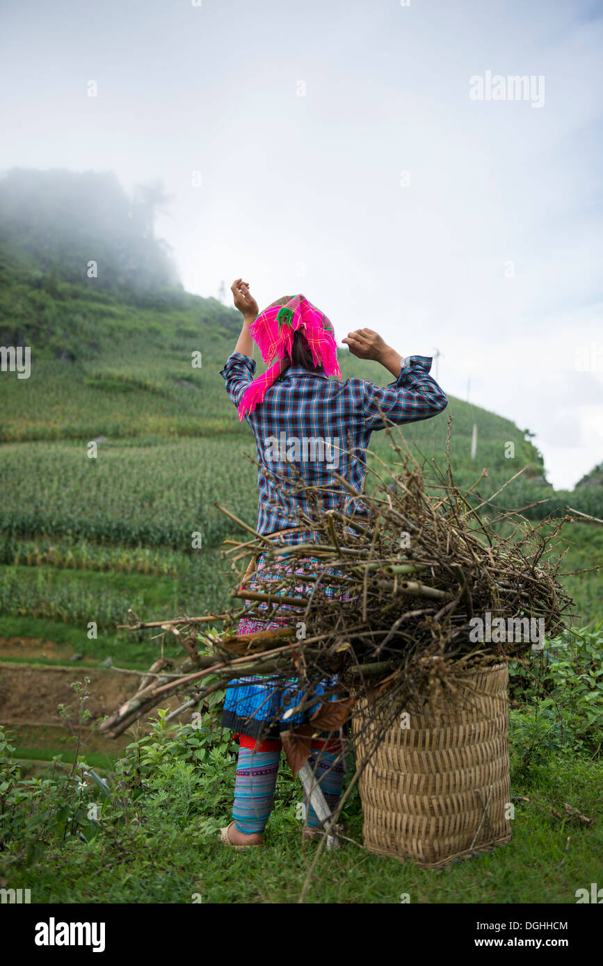 Minority group Flower Hmong woman with firewood basket, Bac Ha, Lao Cai, Vietnam - Stock Image