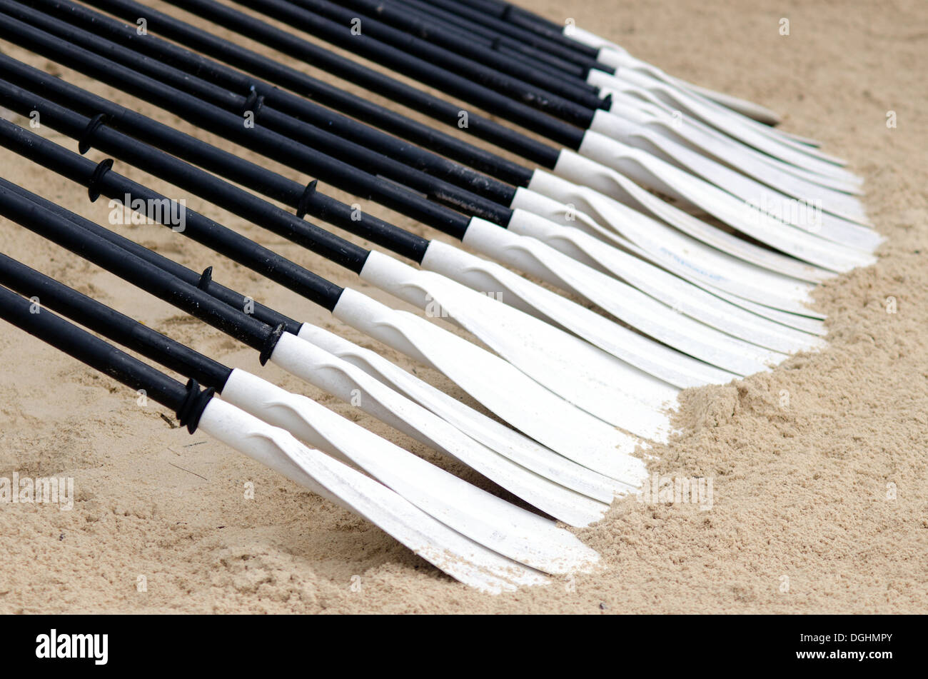 A row of a Canoe and Kayak Paddles - Stock Image