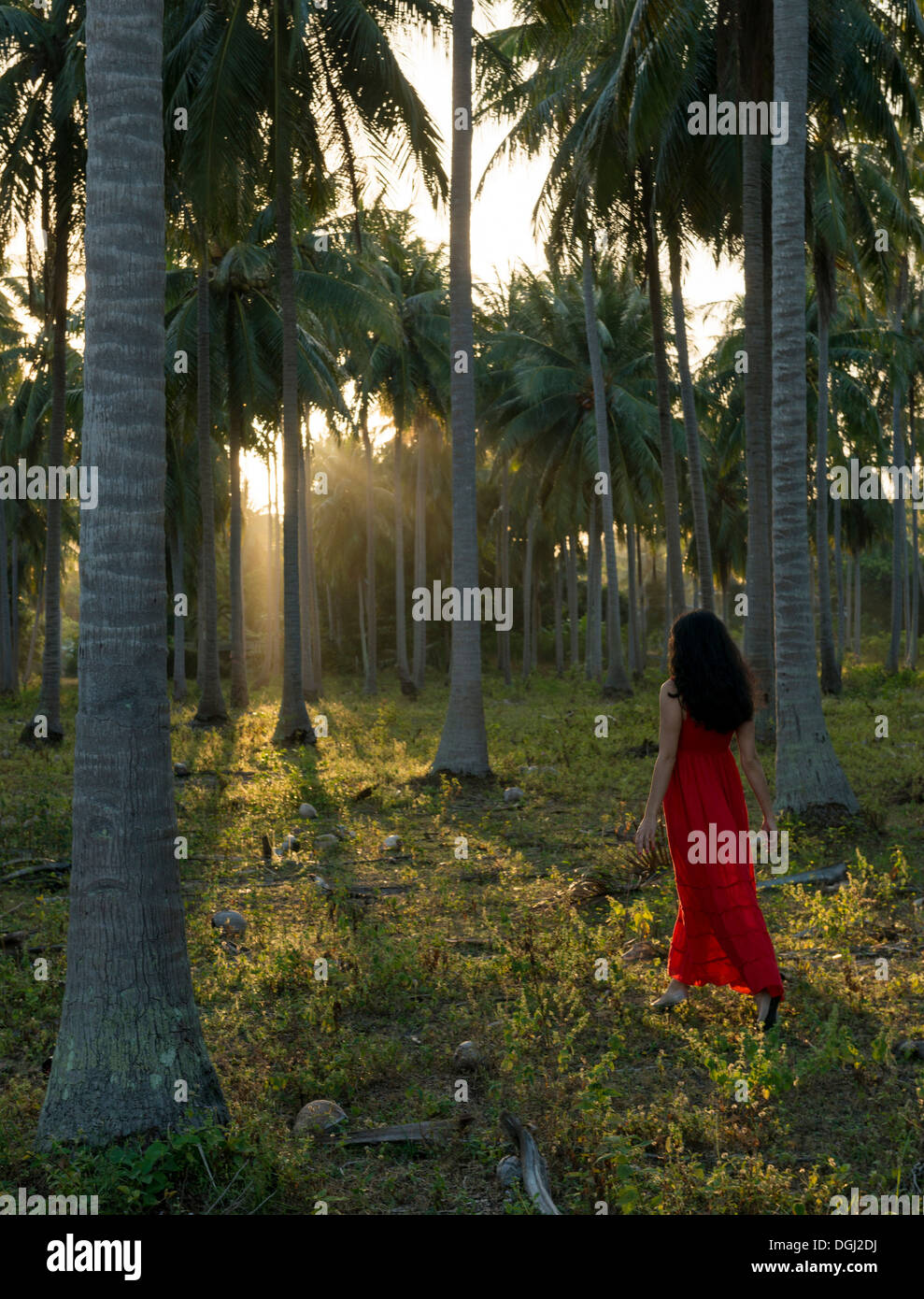 Woman wearing red dress walking in forest of palm trees - Stock Image