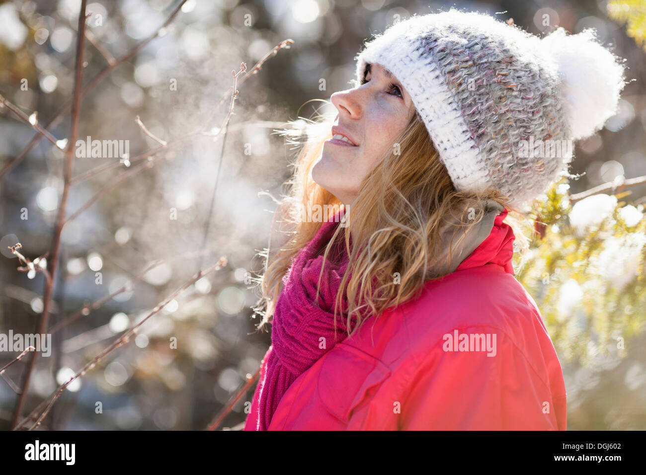 Young adult woman among snow-covered tree branches - Stock Image