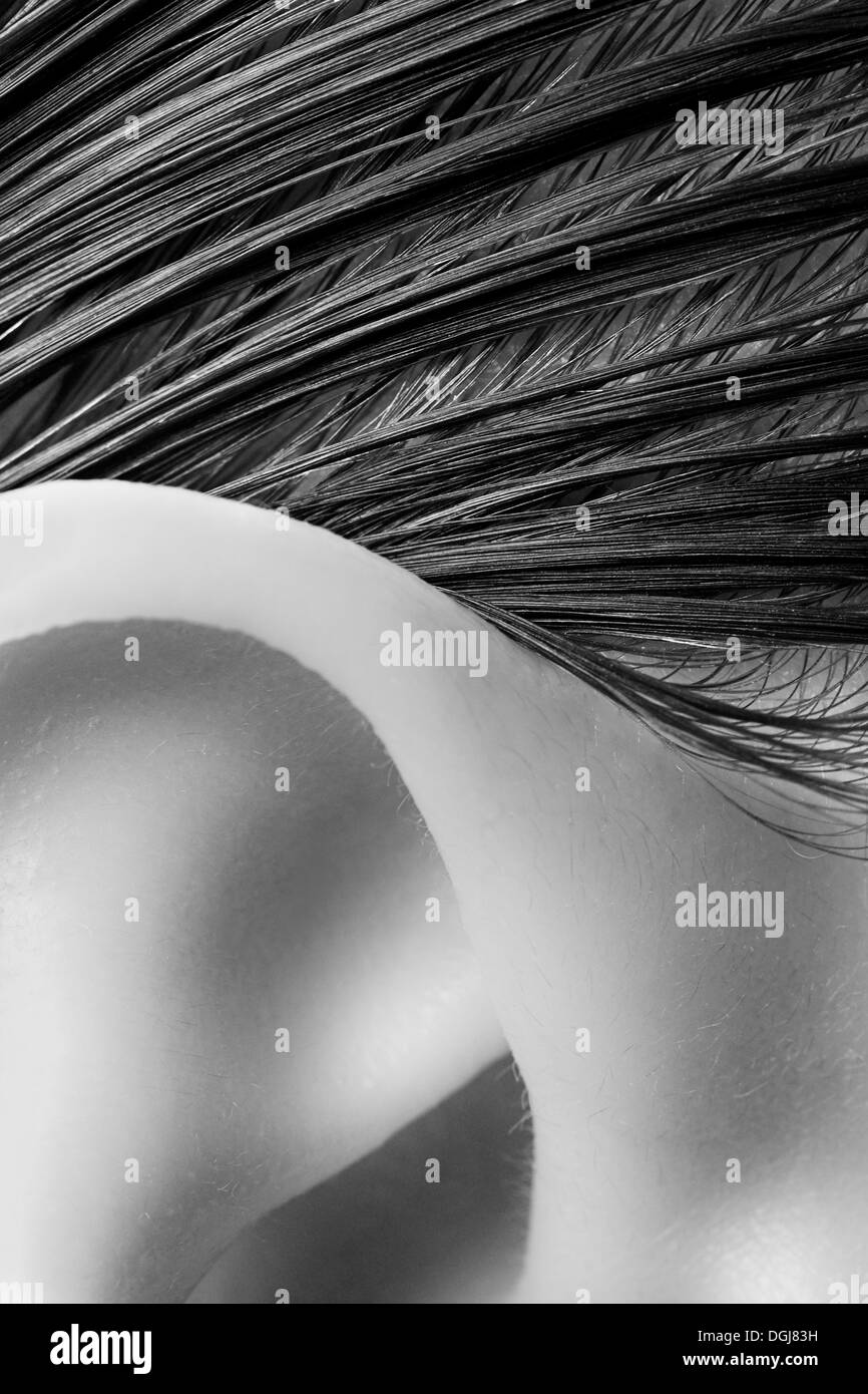 Close up view of a womans ear and hairline. - Stock Image