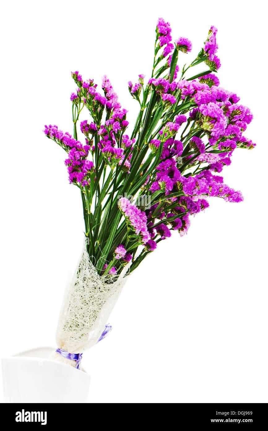 Bouquet from purple statice flowers in vase isolated on white stock bouquet from purple statice flowers in vase isolated on white background closeup mightylinksfo