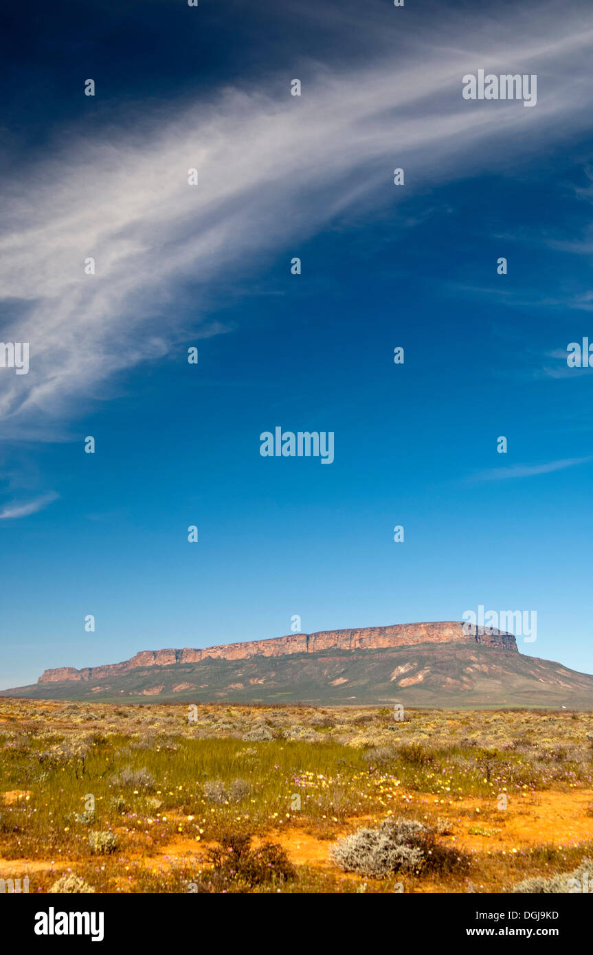 The Gifberg, Poison Mountain, in the vast Nama Karoo near Vanrhynsdorp, Western Cape Province, South Africa, Africa - Stock Image