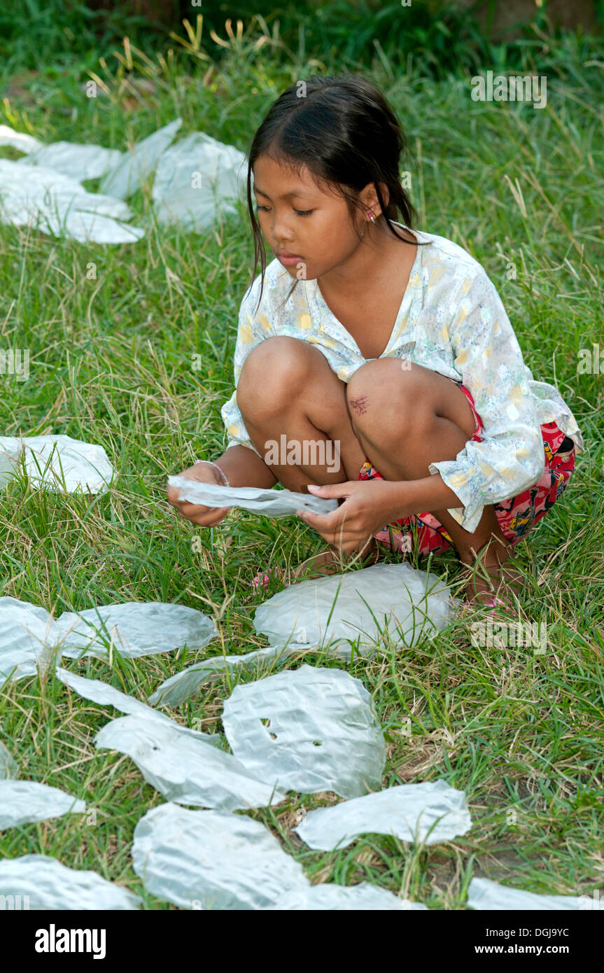 Khmer girl spreading rice paper for spring rolls to dry in a meadow, Battambang, Cambodia, Southeast Asia, Asia - Stock Image