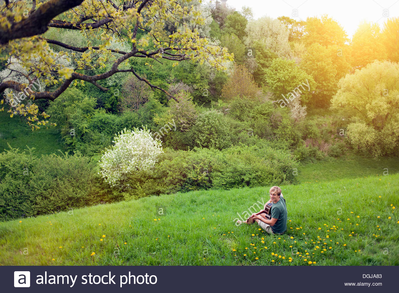 Distant view of young man sitting in field with guitar - Stock Image