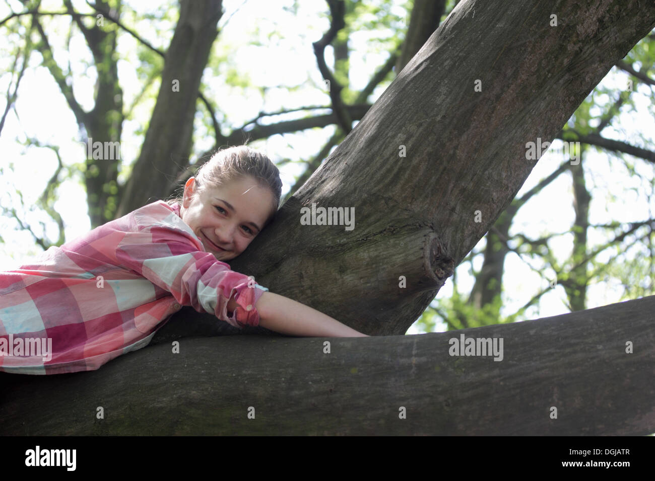 Portrait of young girl lying on top of tree branch - Stock Image