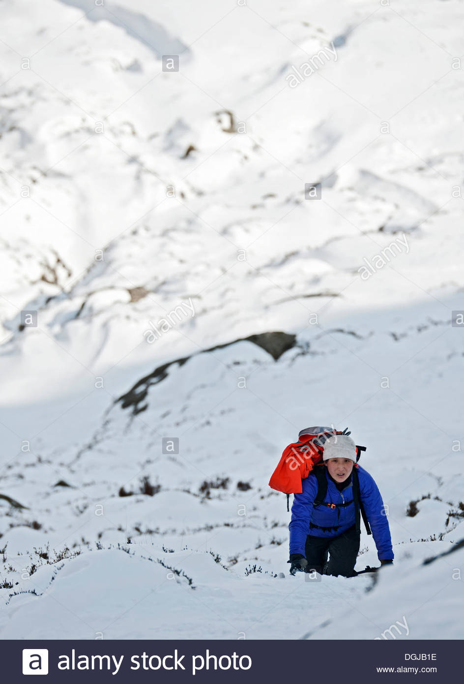 Female climber coming up snow covered mountainside, Castell y Geifr, Snowdonia - Stock Image