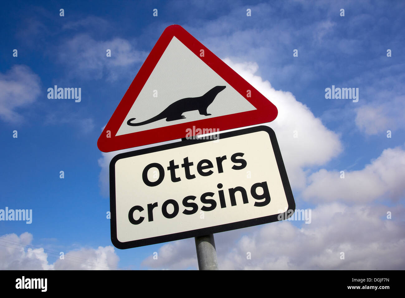 Road sign at otter crossing point. - Stock Image
