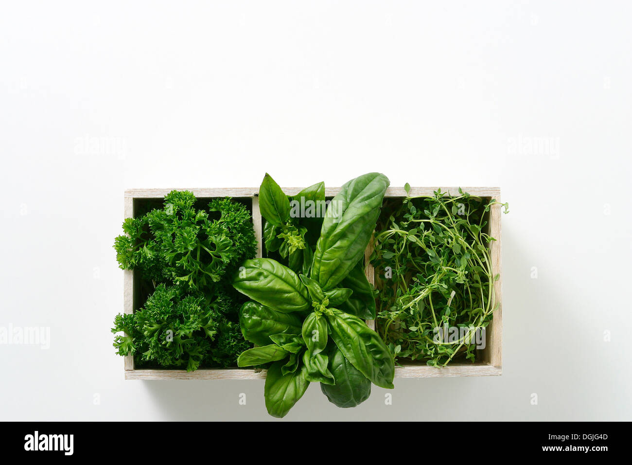 Window box of growing salad leaves - Stock Image