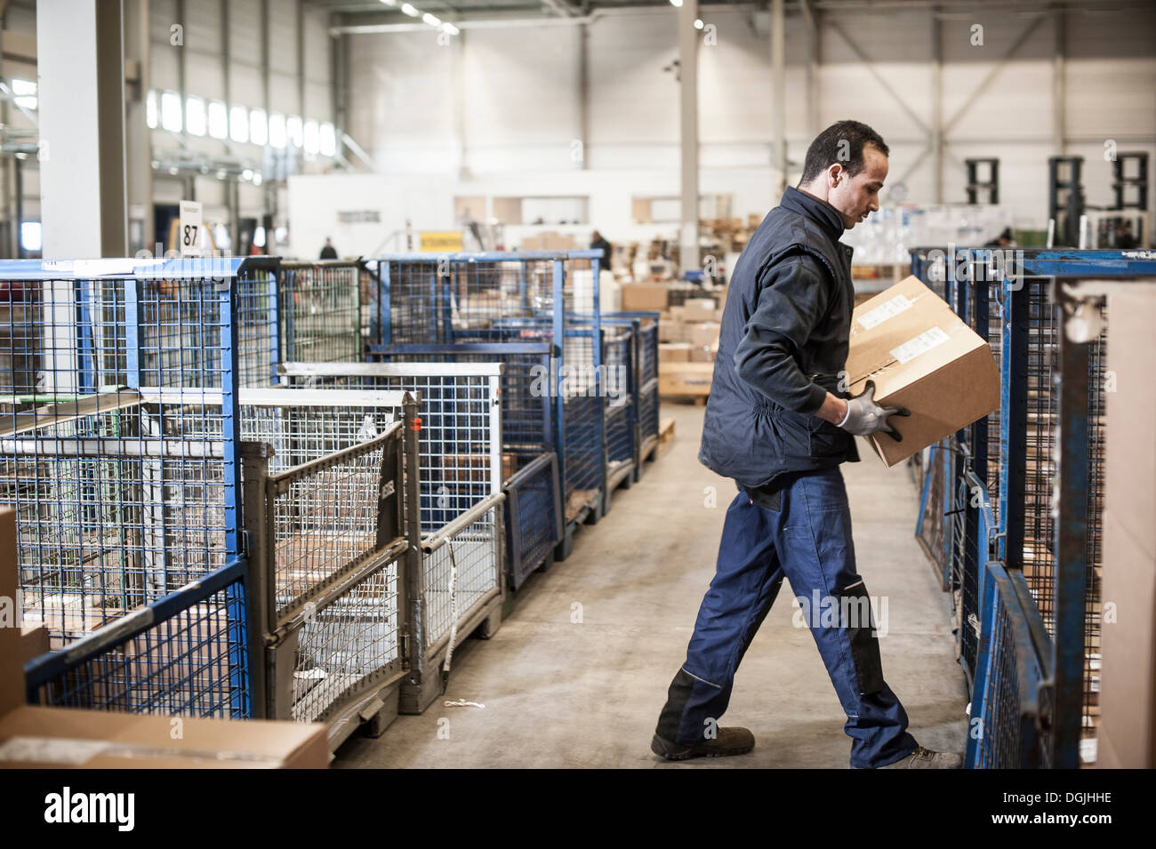 Male warehouse worker lifting cardboard box onto distribution trolley - Stock Image