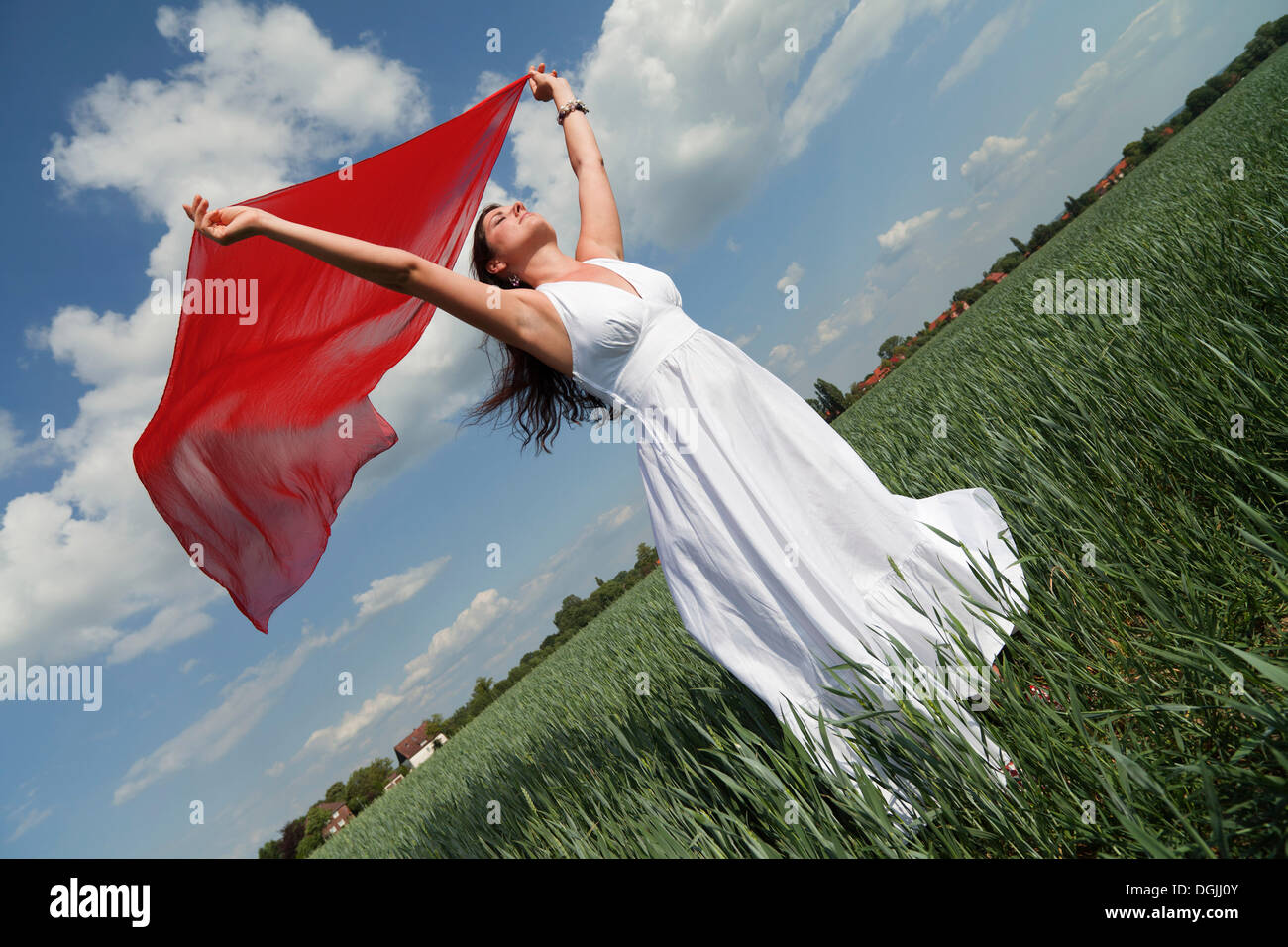 Oblique view of a young woman wearing a white summer dress in a green corn field while holding a red silk scarf fluttering in - Stock Image