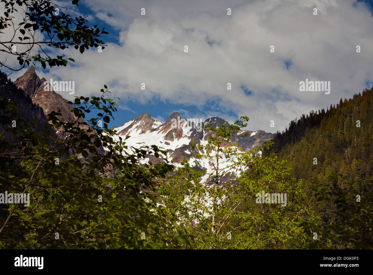 WASHINGTON - Mount Anderson at the upper end of the Enchanted Valley in Olympic National Park. - Stock Image