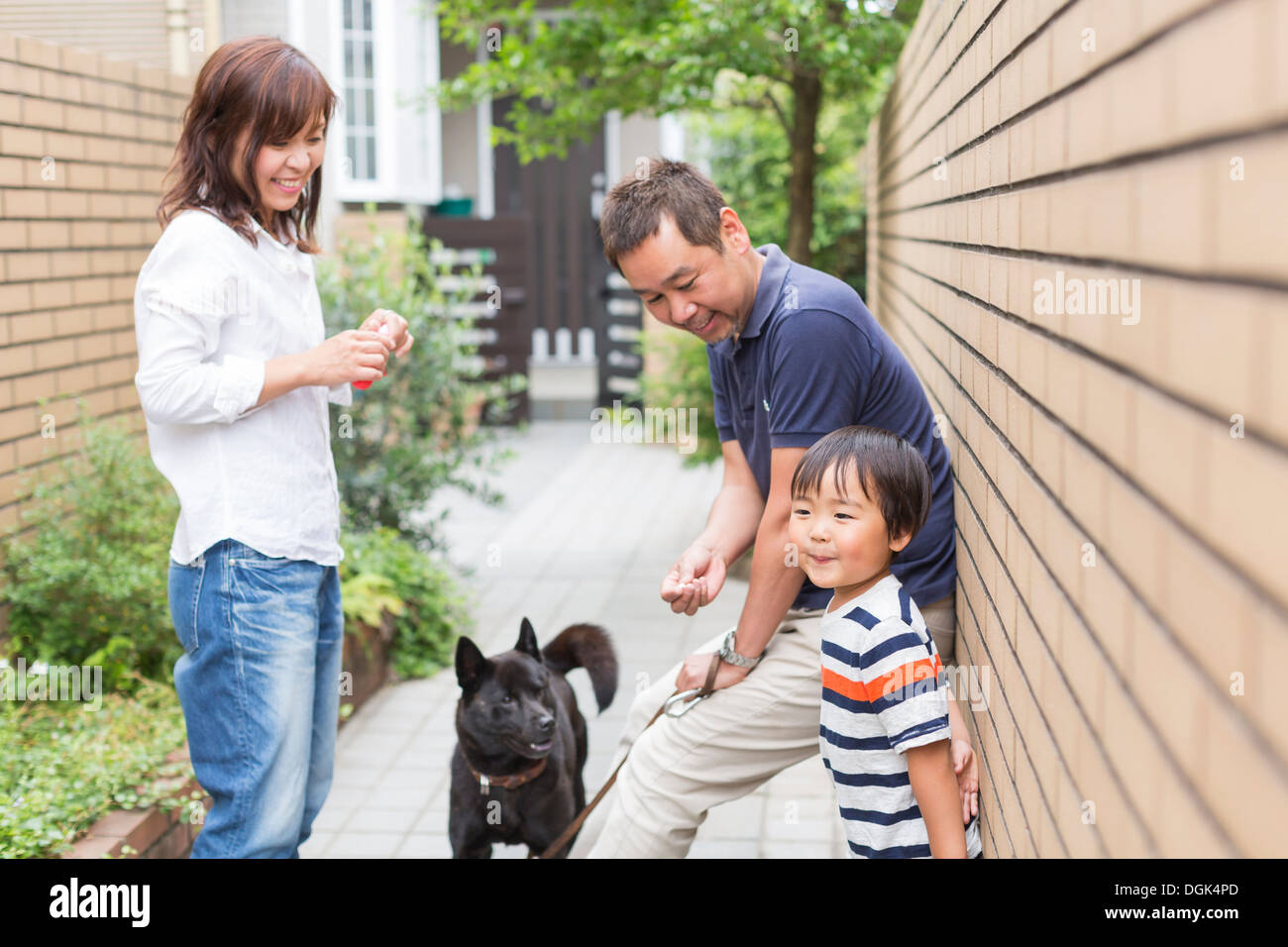 Parents with son and pet dog - Stock Image