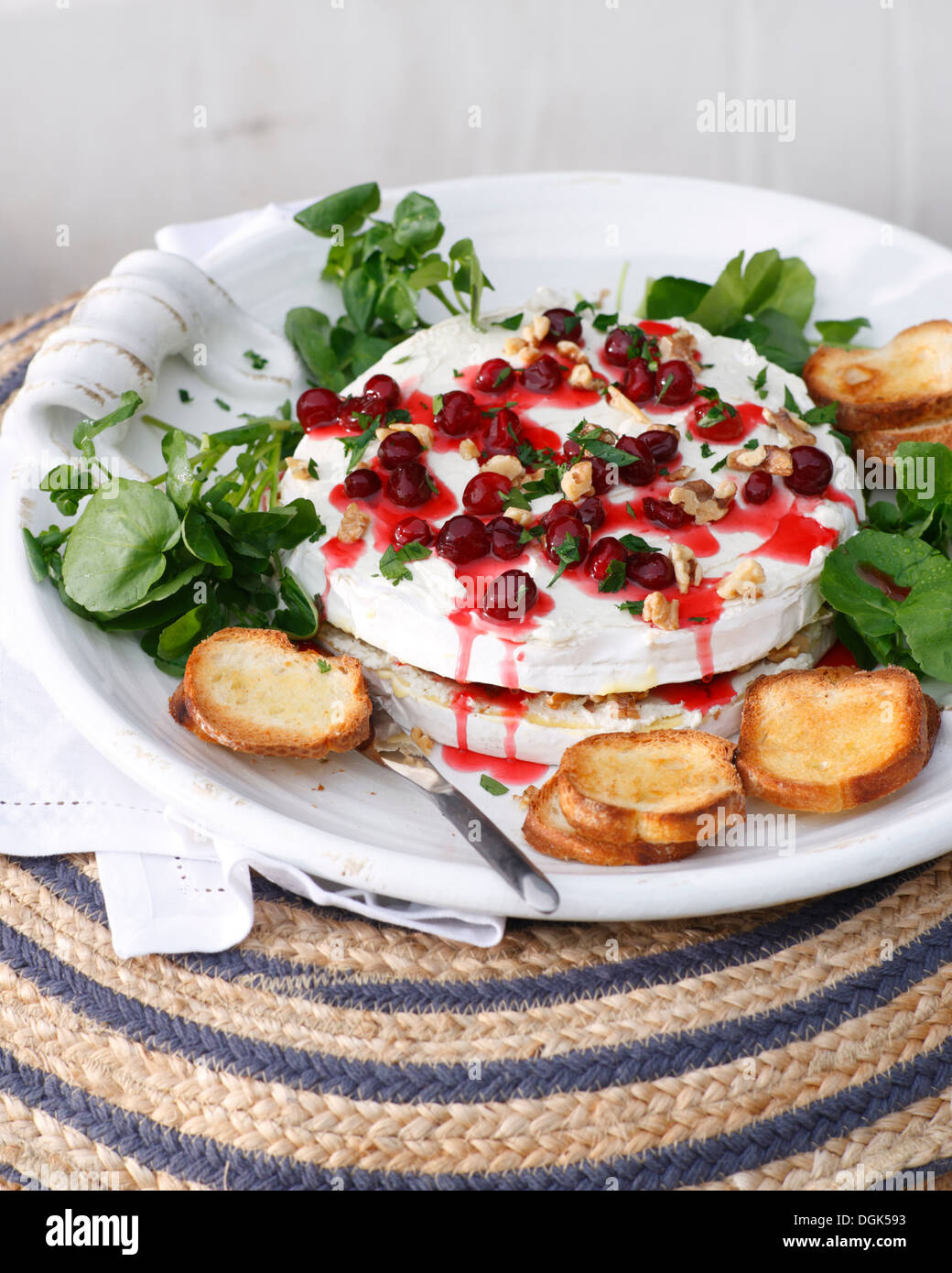 Brie and cranberry cheesecake with toast and cranberry coulis - Stock Image