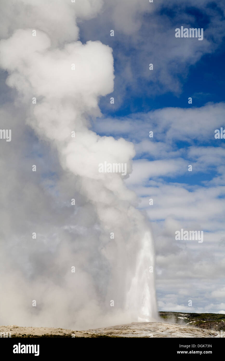 A geyser in Yellowstone jets hot steam into the air. - Stock Image