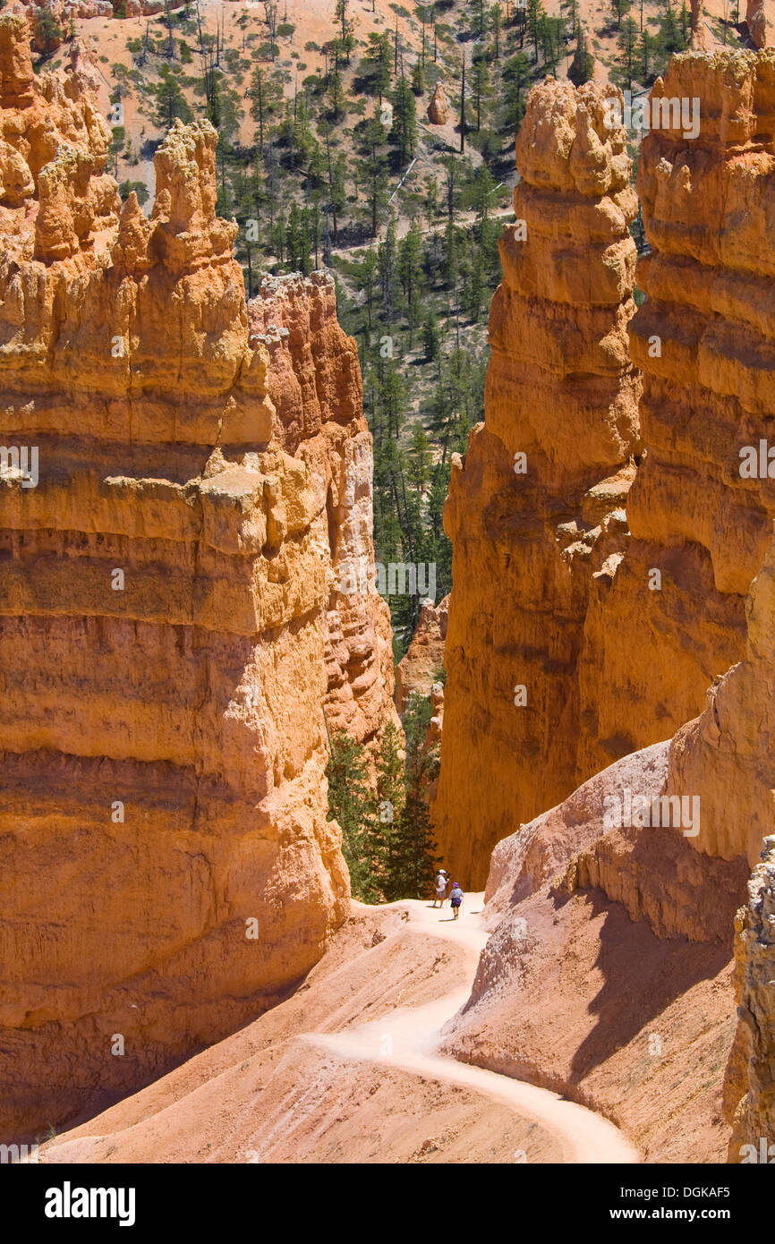 Two hikers dwarfed by the immense sandstone hoodoos of Bryce Canyon. - Stock Image