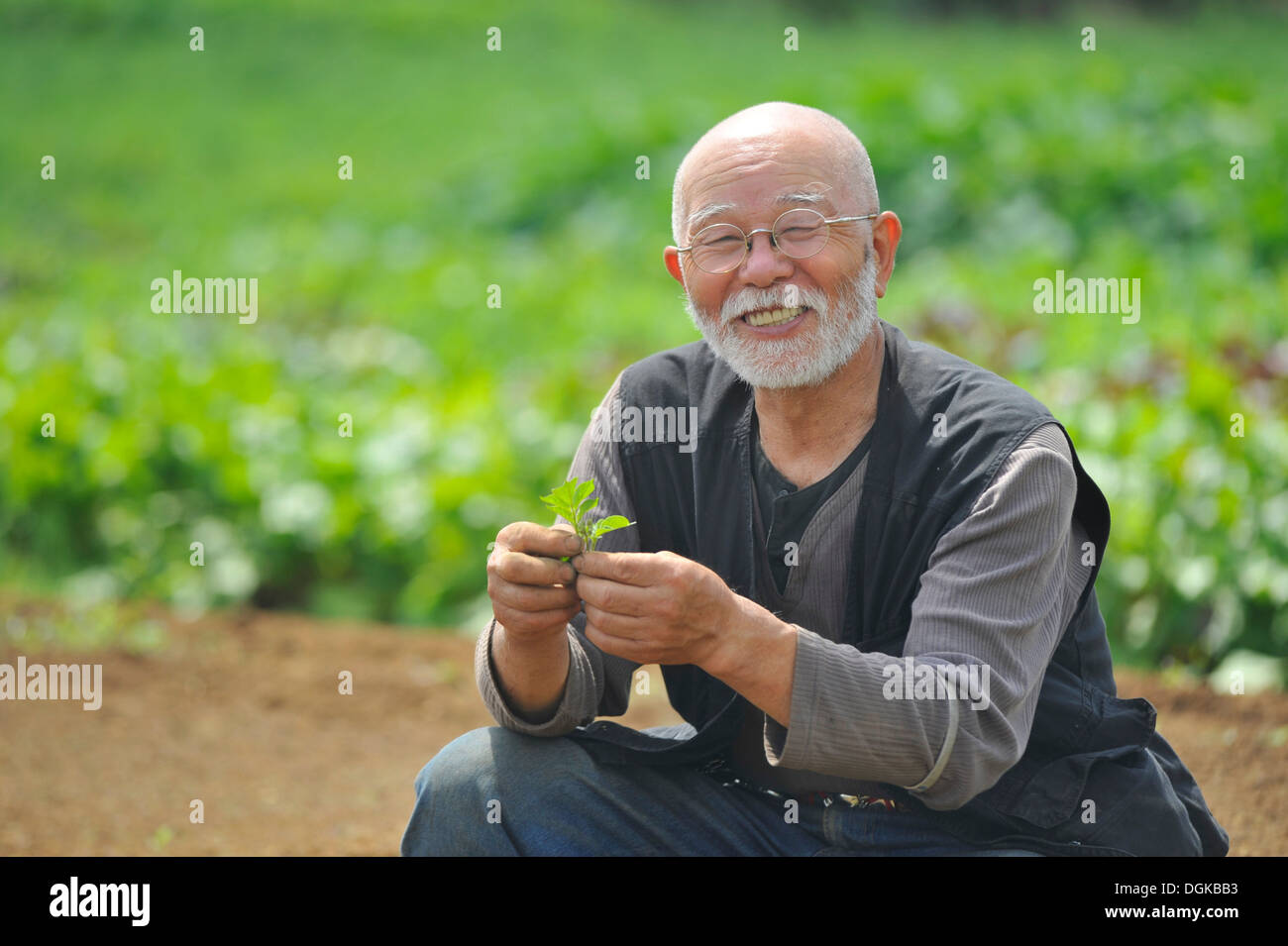 Farmer with leaf smiling at camera - Stock Image