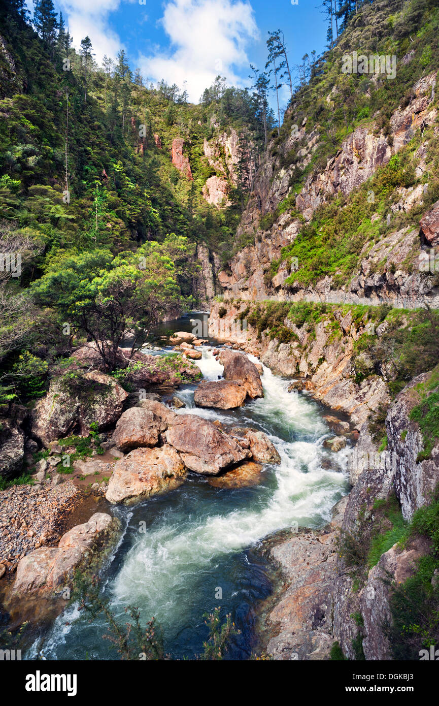 The spectacular Karangahake Gorge, Near Waihi, North Island, New Zealand. The Windows Walk can be seen passing above the river to the right. - Stock Image