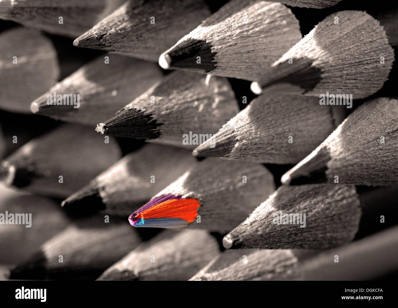 Close up of coloured pencil heads.  Black and white image with colour pop. - Stock Image