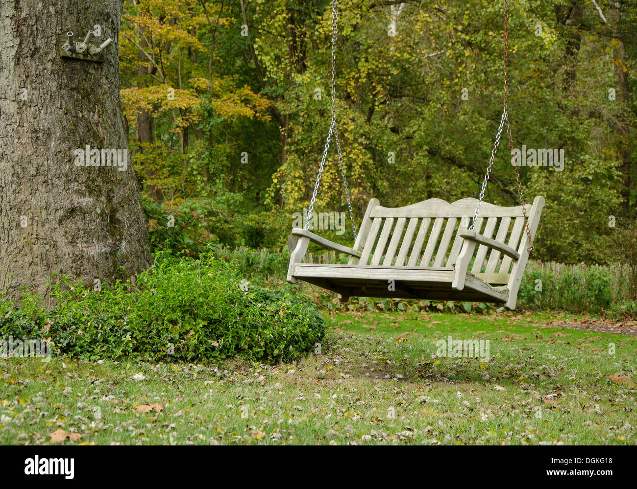 Tremendous Porch Classic Hanging Wooden Swing Or Bench Attached To Tree Caraccident5 Cool Chair Designs And Ideas Caraccident5Info
