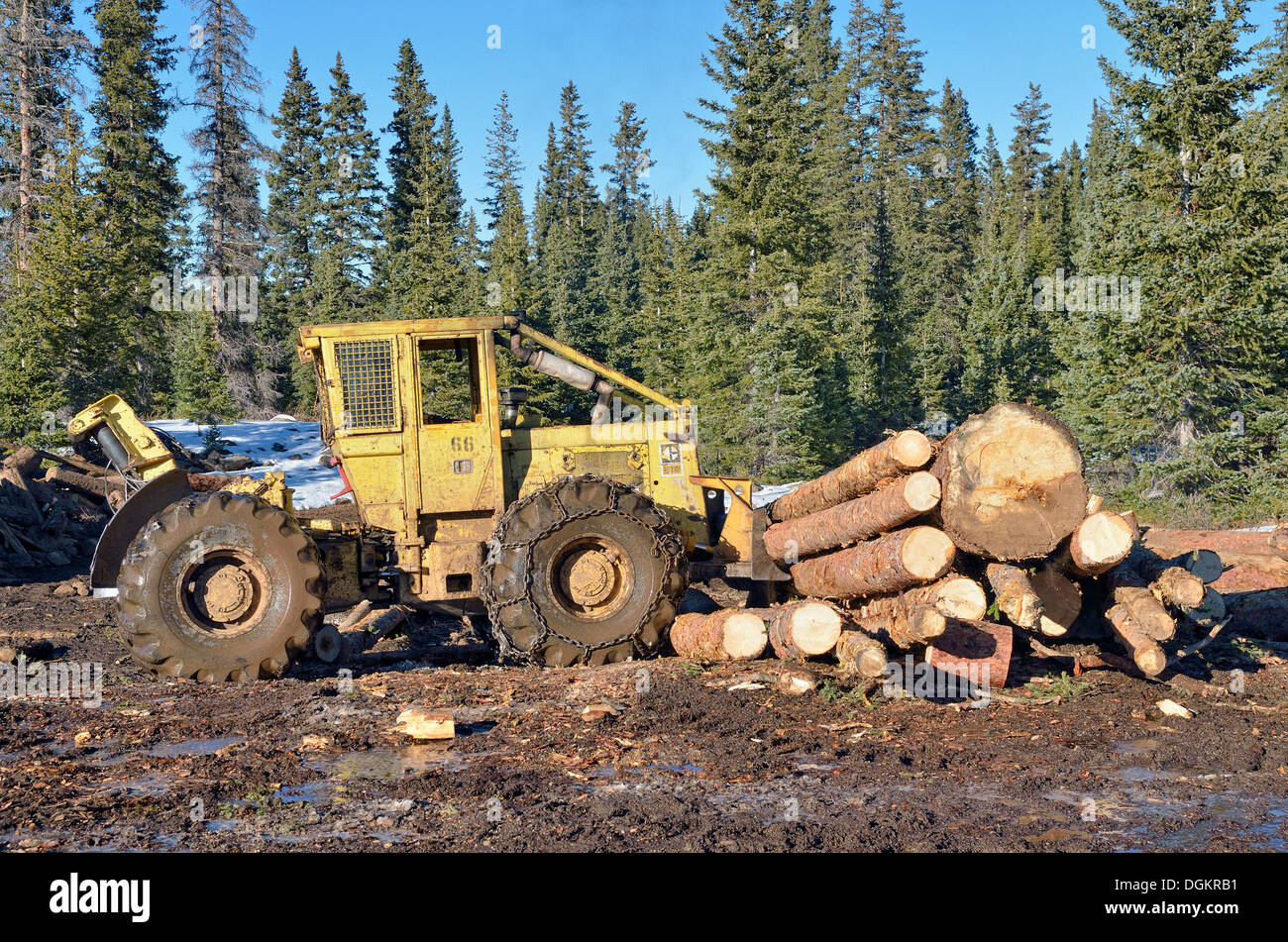 Stack of logs with heavy equipment, bulldozer, Highway 65, Grand Mesa National Forest, Colorado, USA - Stock Image