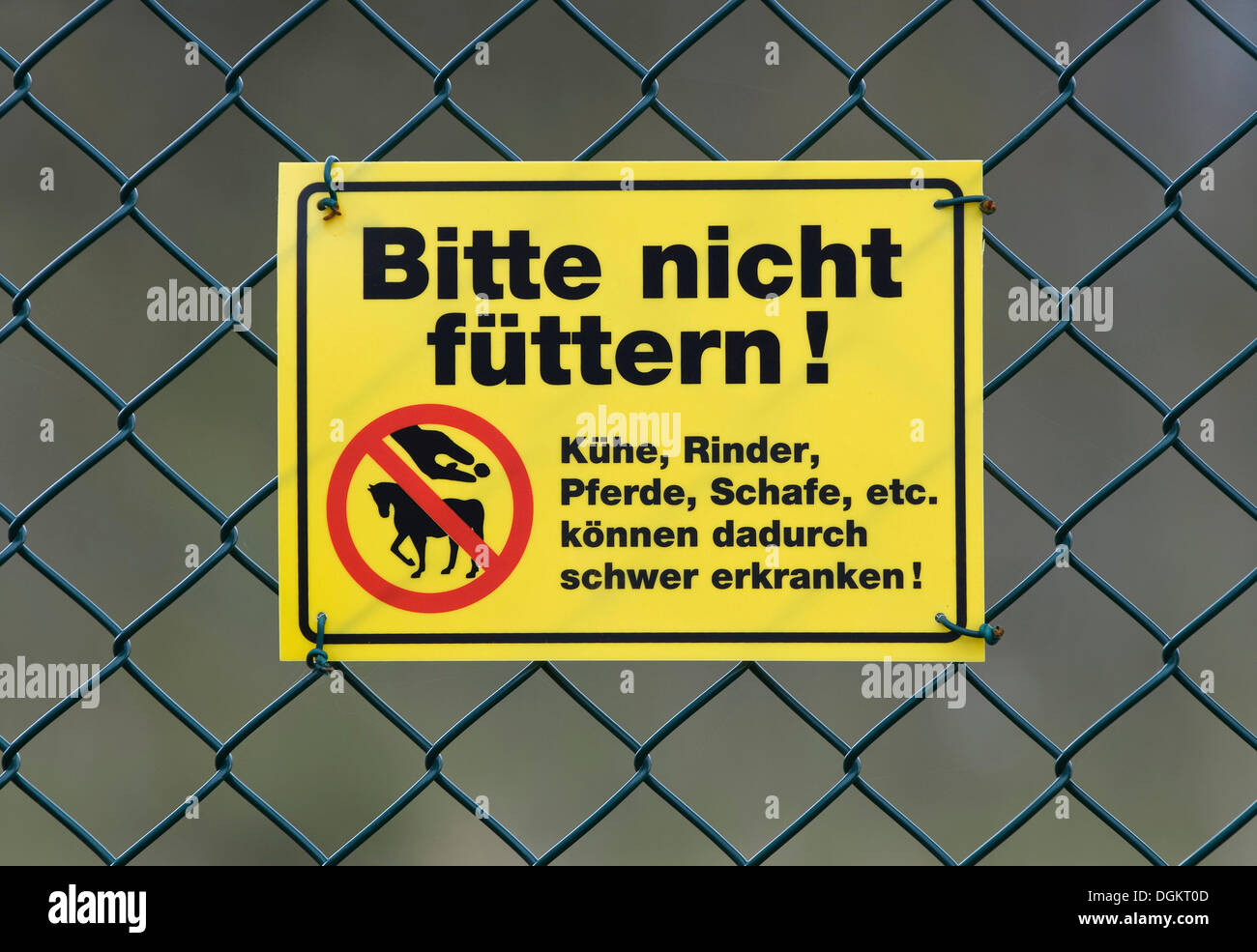Warning sign, Bitte nicht fuettern, Kuehe, Rinder, Pferde, Schafe etc, koennen dadurch schwer erkranken, German for Do Not Feed - Stock Image