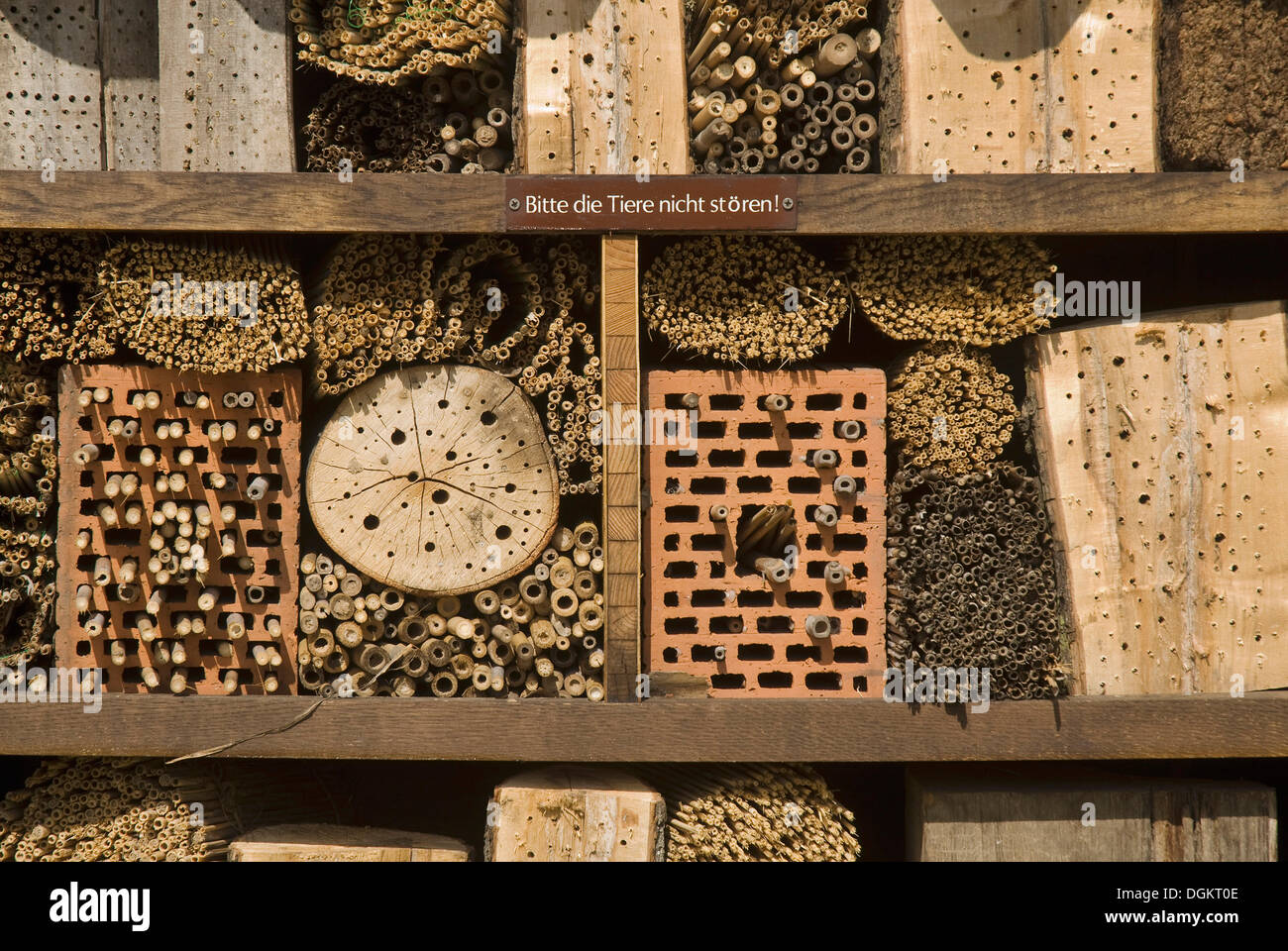 Hotel for insects, aid for nesting - Stock Image