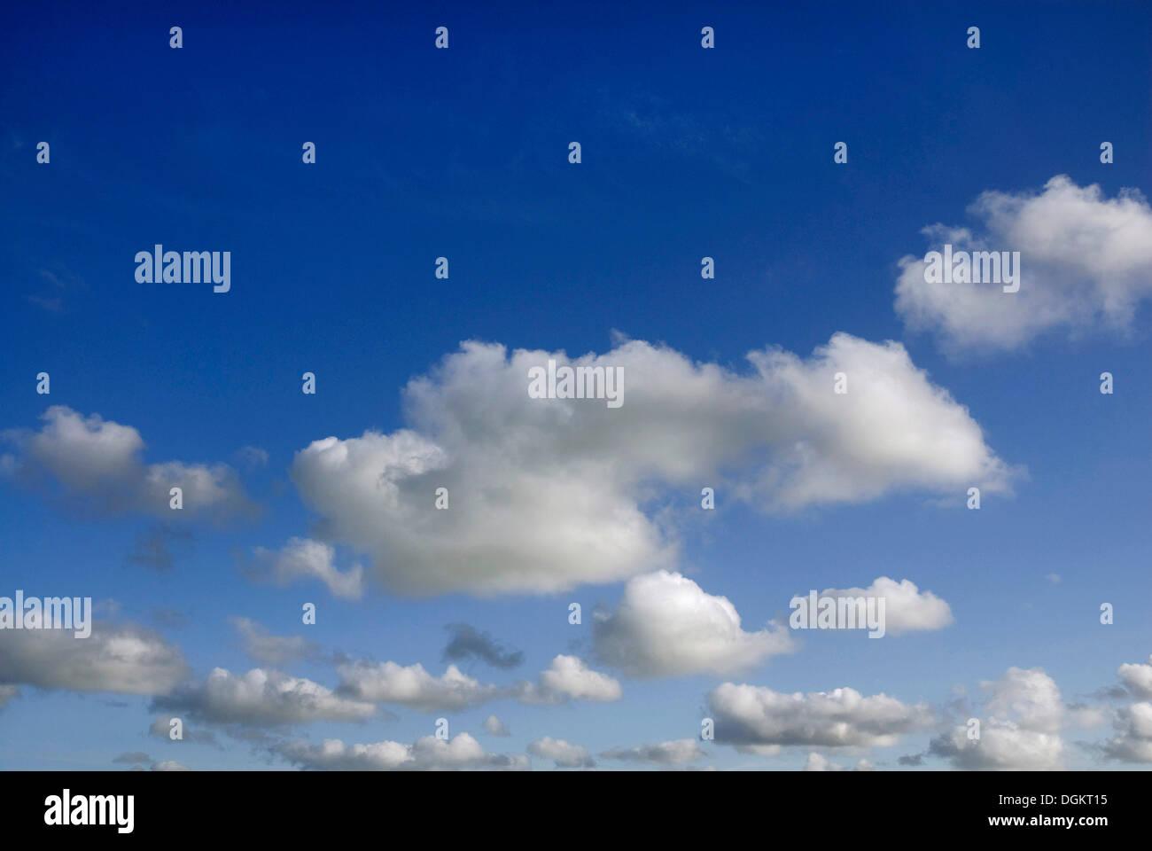 Cumulus clouds in the sky - Stock Image
