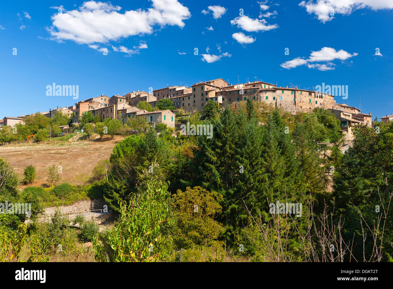 Distant view of Monticiano. - Stock Image