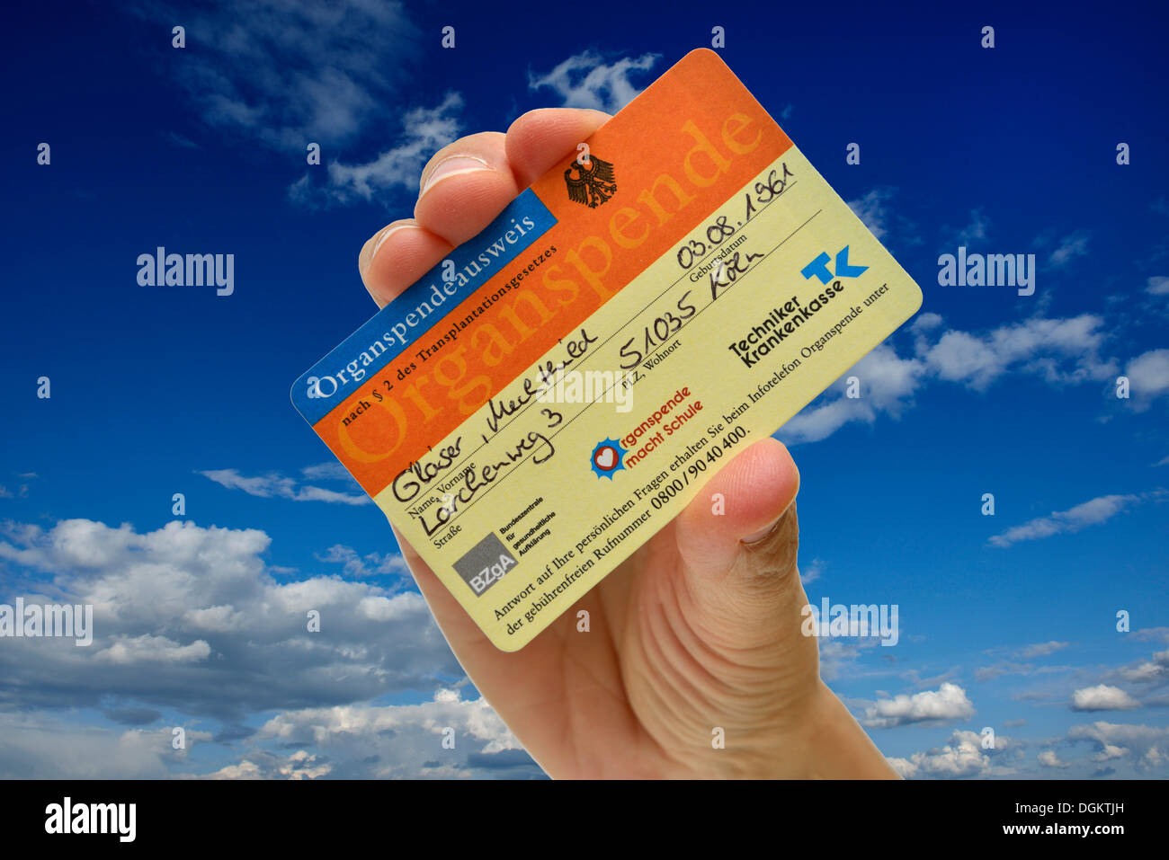 Hand holding an organ donor card, fake name, against a blue sky with some clouds, symbolic image for bearer of hope - Stock Image