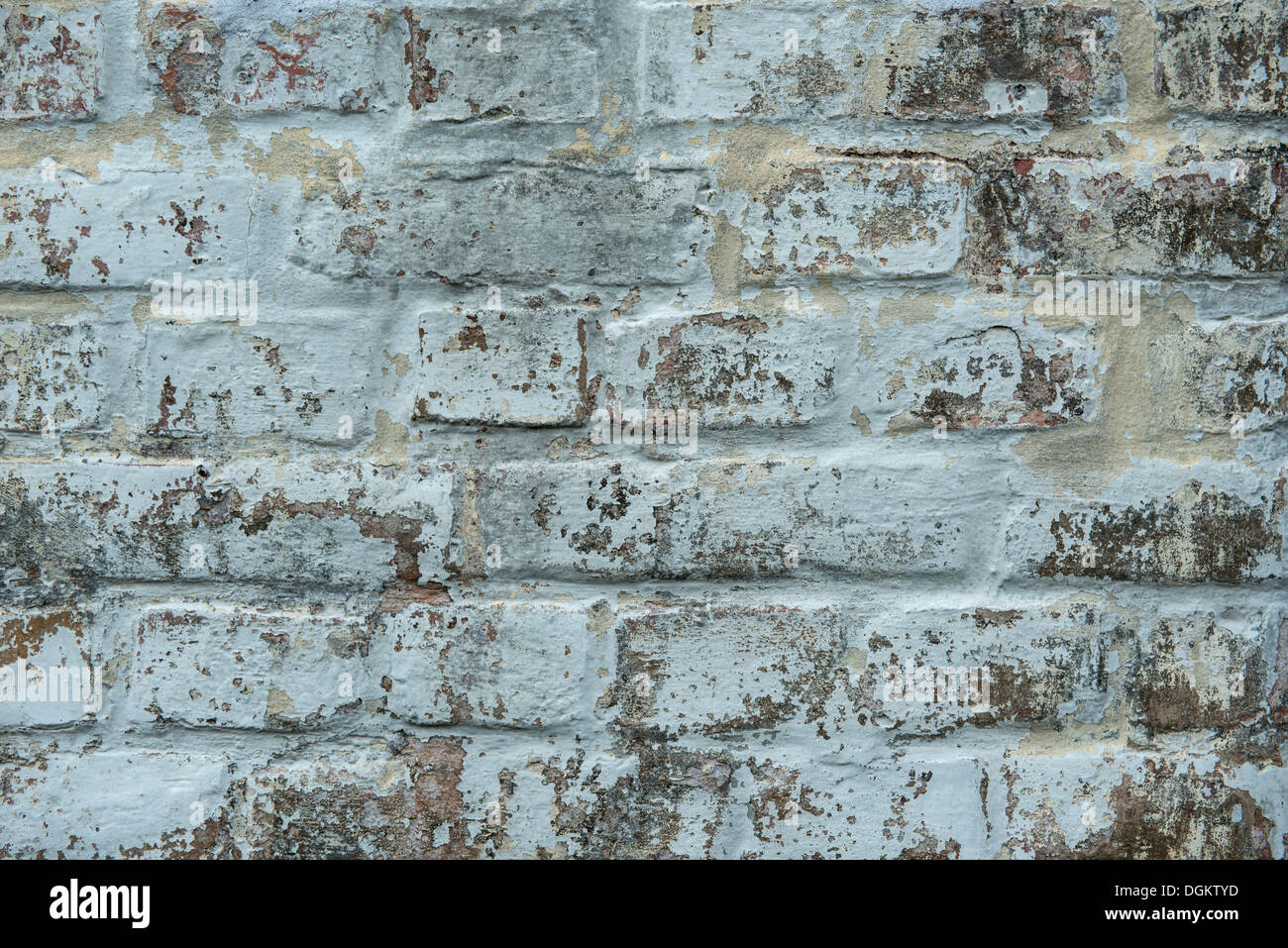 Limed brick wall, PublicGround - Stock Image
