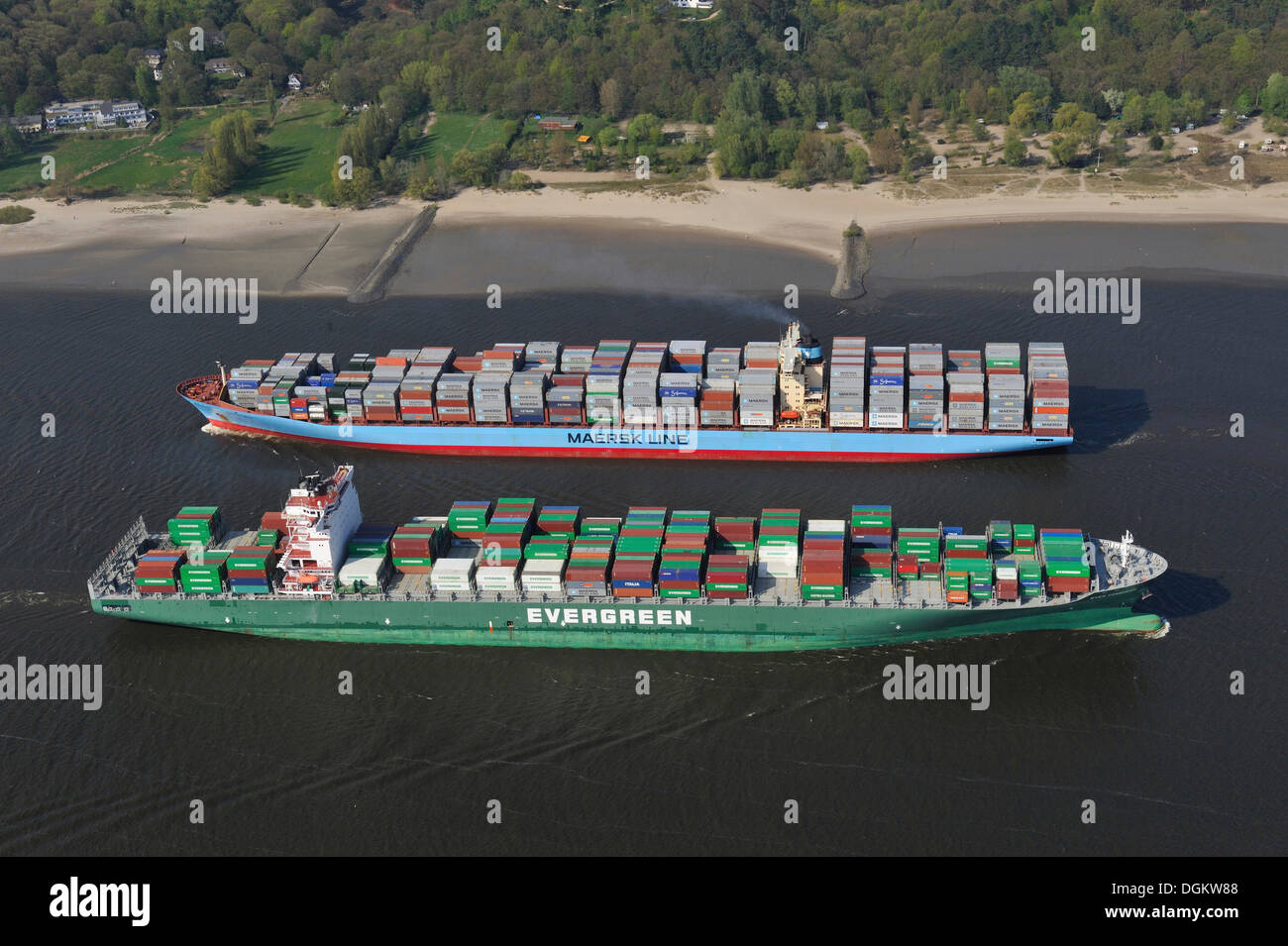 Container ships, Ever Conquest, front, and Charlotte Maersk, rear, on the Elbe River, Hamburg-Port, Hamburg, Hamburg, Germany - Stock Image