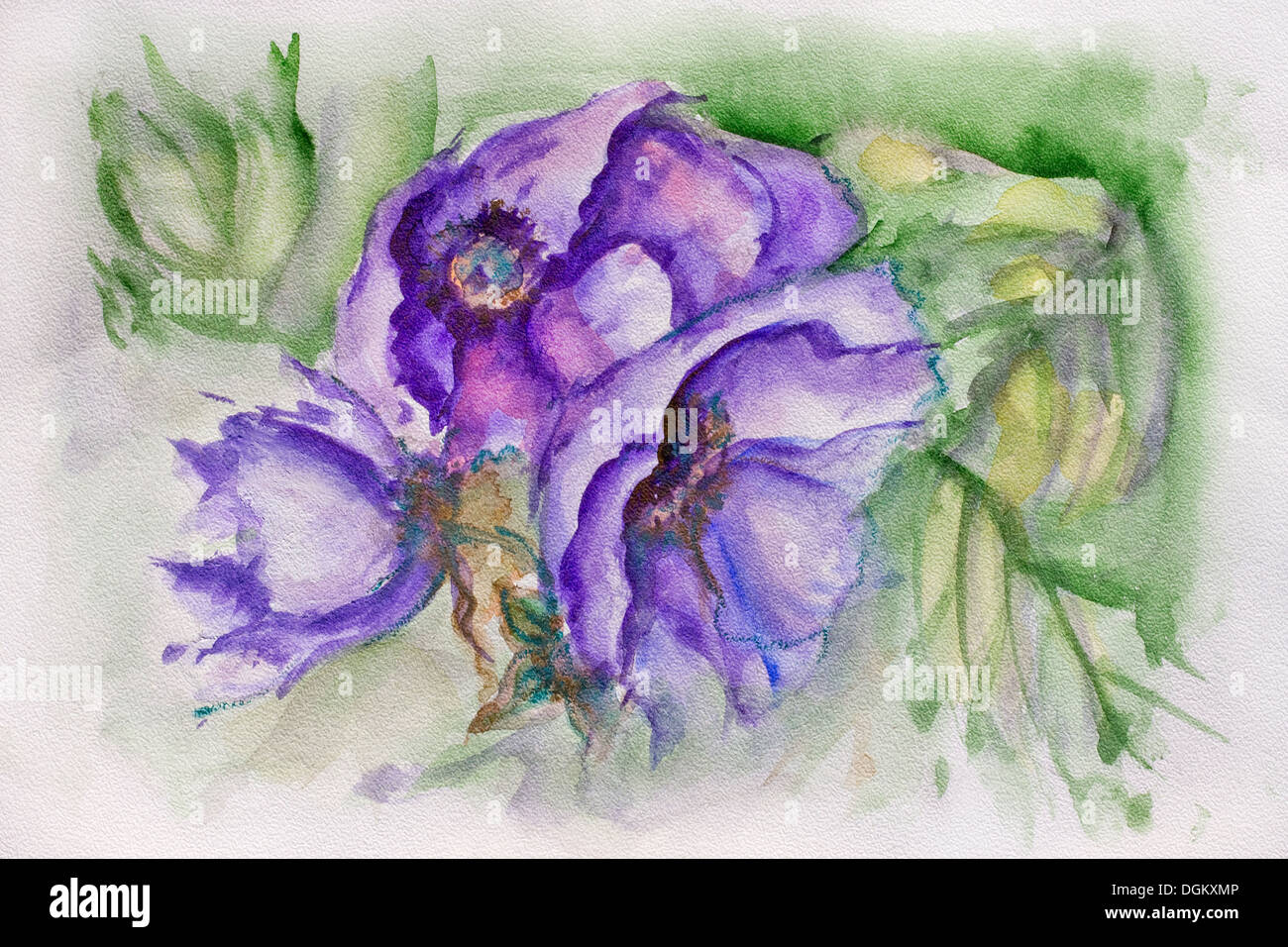 Example image of blue terry tulip on the specific textured professional watercolor paper - Stock Image