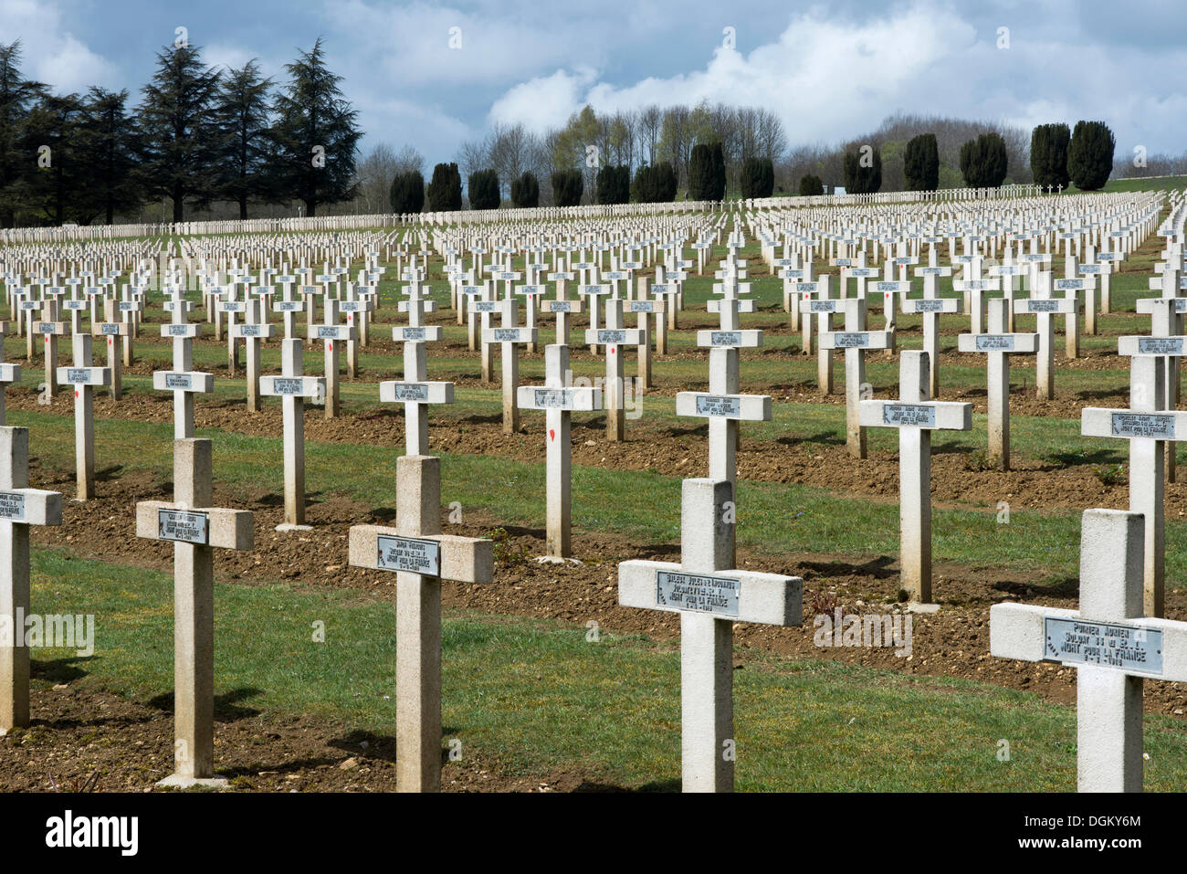 Graves, crosses, headstones with name plates on a military cemetery, Battle of Verdun, First World War, Verdun, Lorraine, France - Stock Image