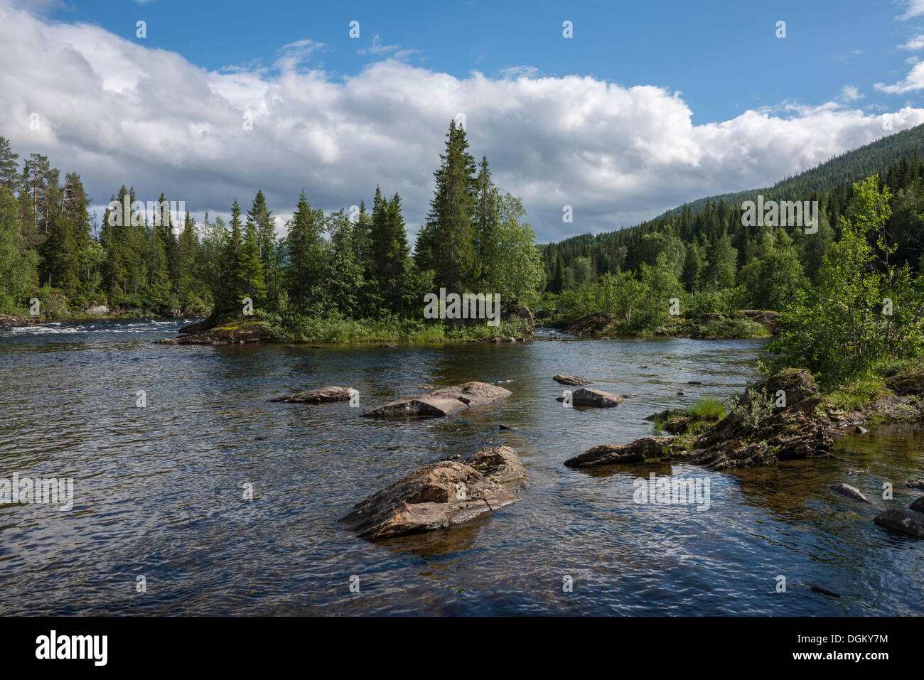 Landscape with the salmon river of Namsen, Namsskogan, Tal Namdalen, Nord-Trøndelag, Trøndelag, Norway - Stock Image