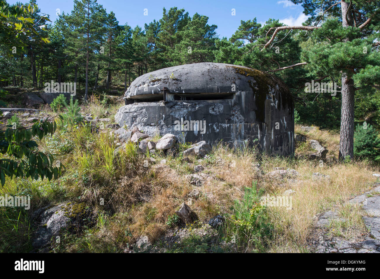Old German bunker from the Second World War, in the woods, Kristiansand, Insel Odderøya, Vest-Agder, Southern Norway, Norway - Stock Image