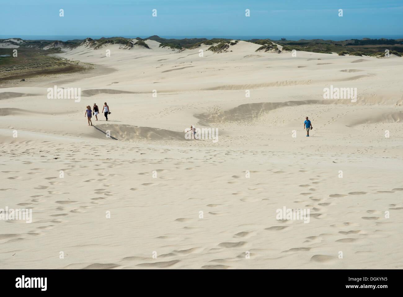 Tourists strolling on the Råbjerg Mile migrating dune, Kandestederne, Region Nordjylland, Jutland, Denmark - Stock Image
