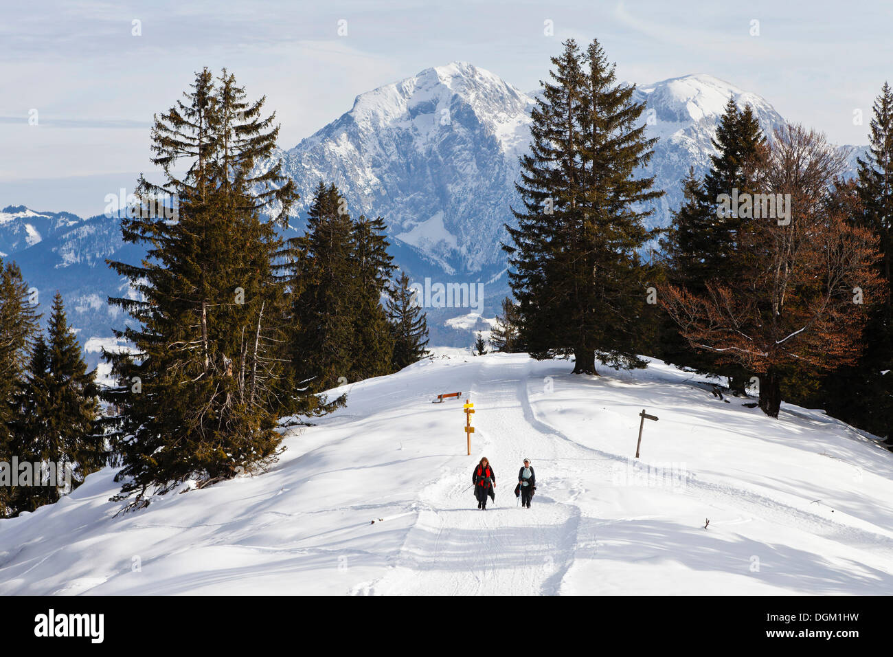 Winter hiking on Toter Mann mountain, Hoher Goell mountain at the back, cbservation summit in the ski region of Stock Photo