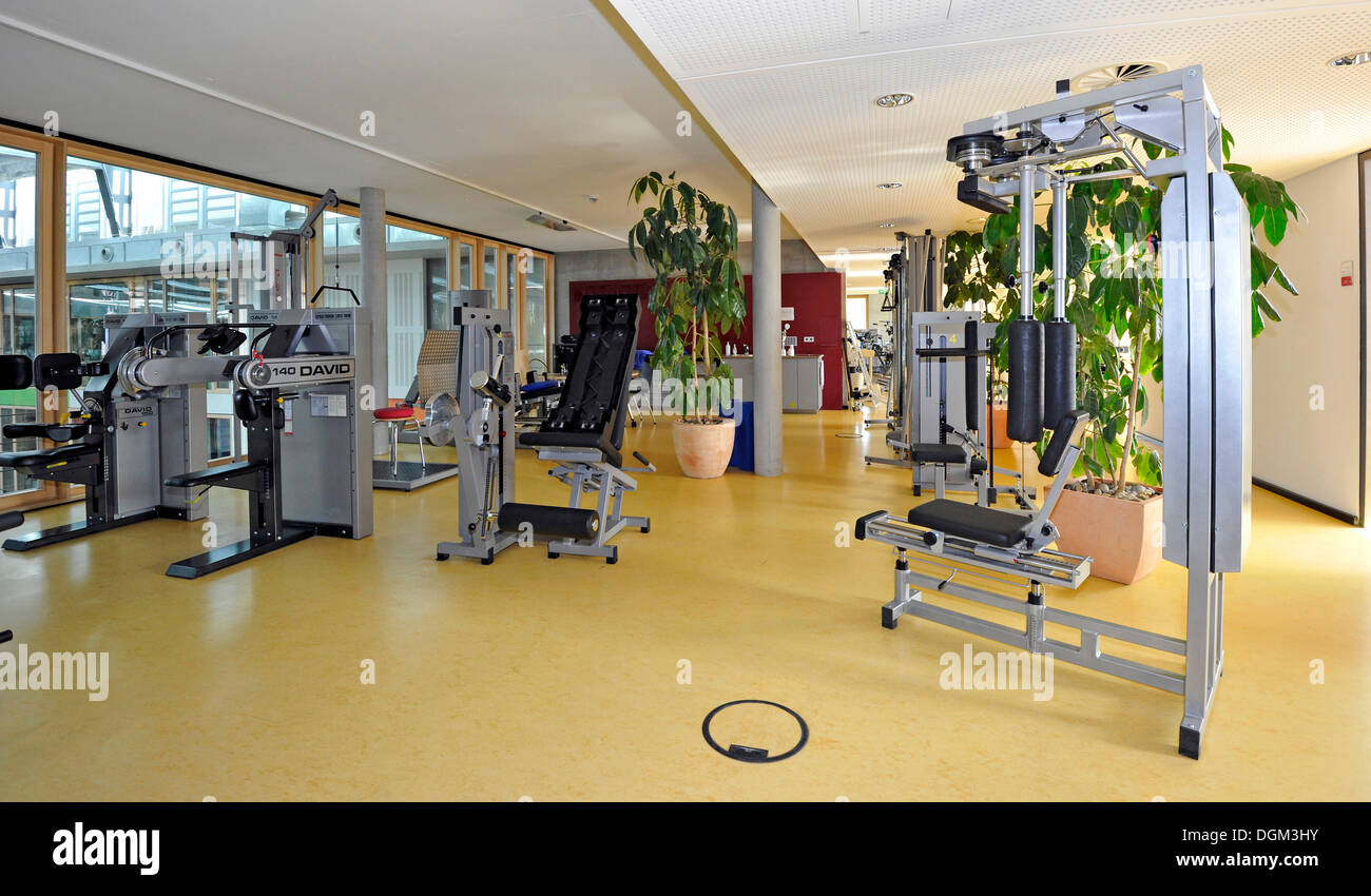Medical treatment room for back training according to the DAVID concept, an apparatus-supported method for the analysis and - Stock Image