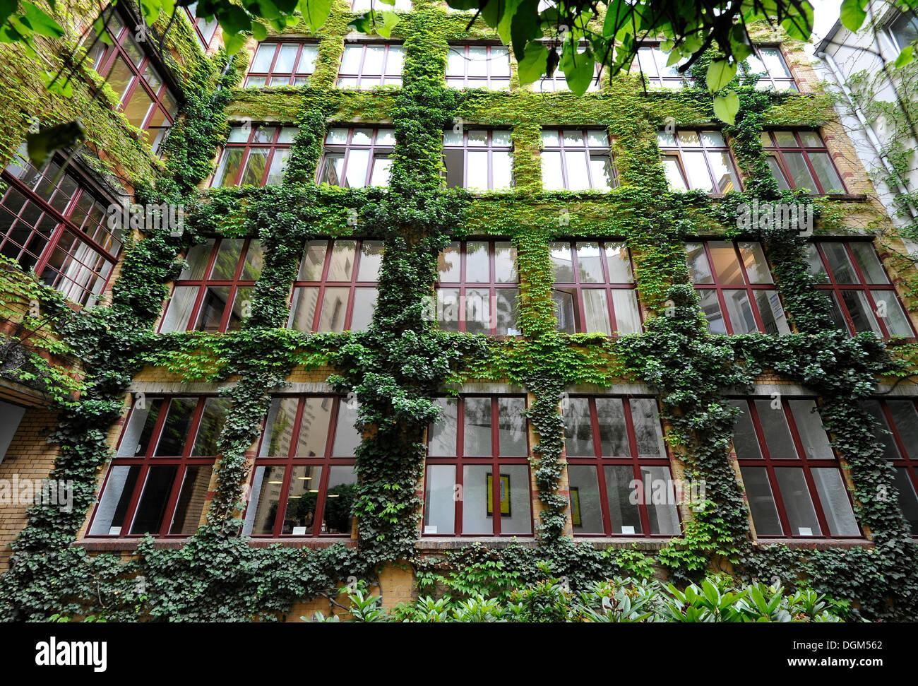 Sophie-Gips-Hoefe, yards, Mitte quarter, Berlin - Stock Image