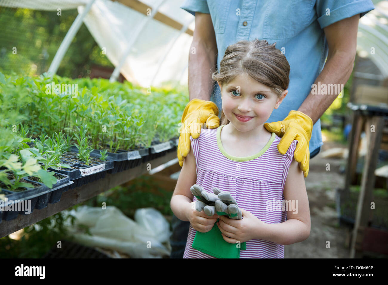 On farm Children adults working together man young child gardening gloves standing beside bench of young seedling plants in - Stock Image