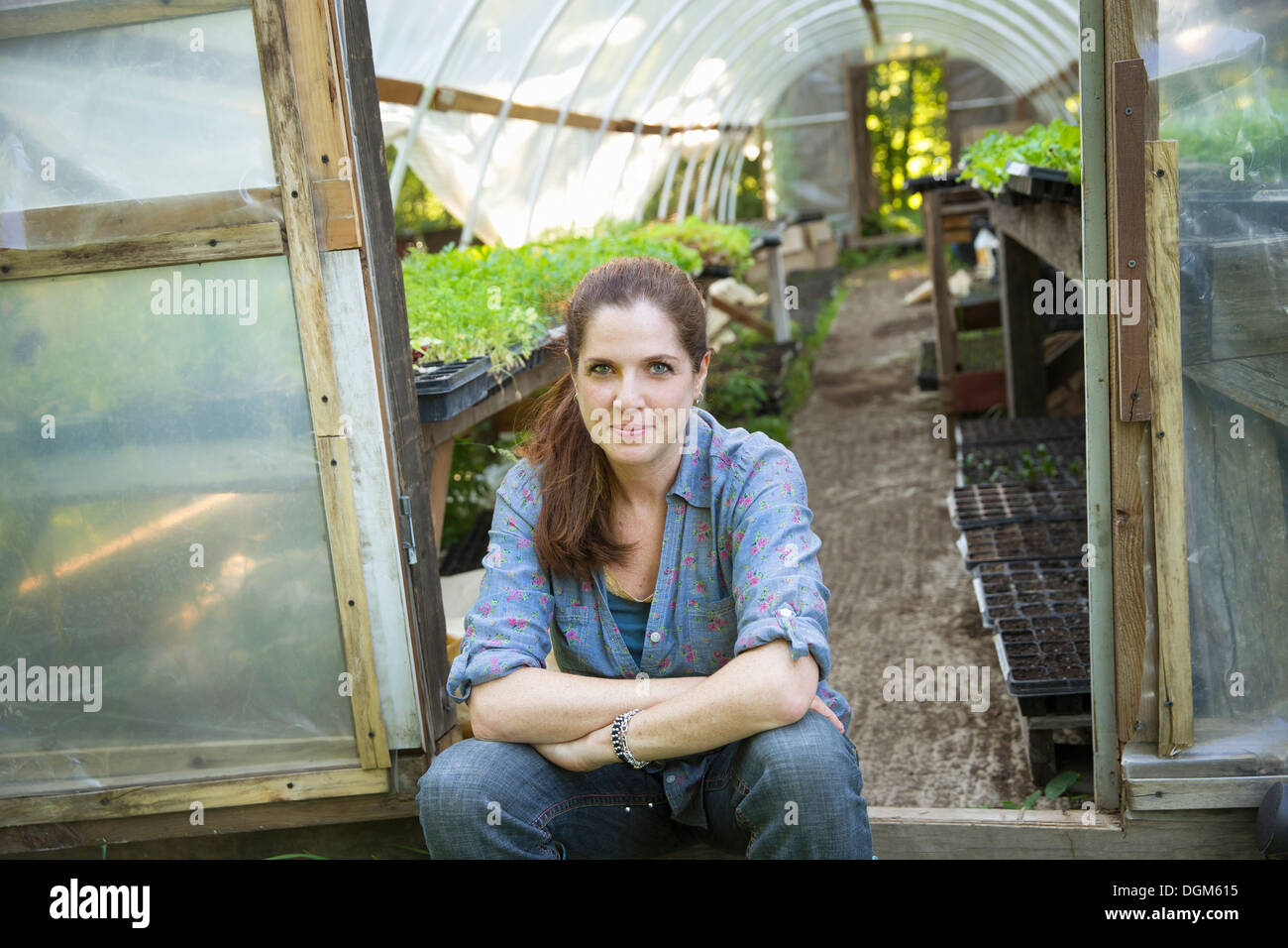 On the farm. A woman sitting resting at the door of a glasshouse with benches full of young seedling plants. - Stock Image
