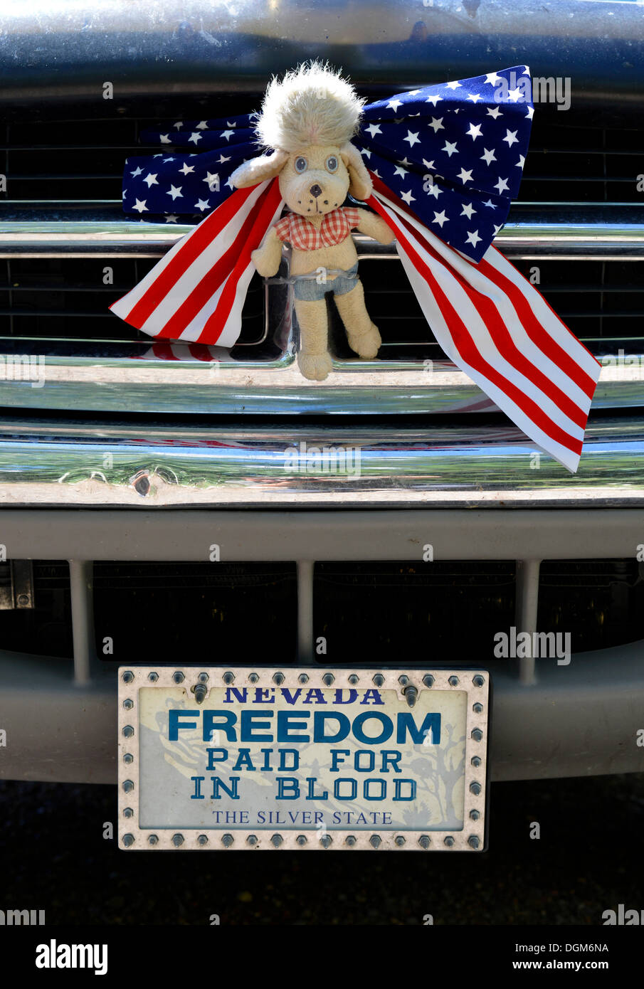 Patriotic radiator adornment of a motor vehicle, 'Freedom paid for in blood' licence plate, Grand Staircase-Escalante National - Stock Image